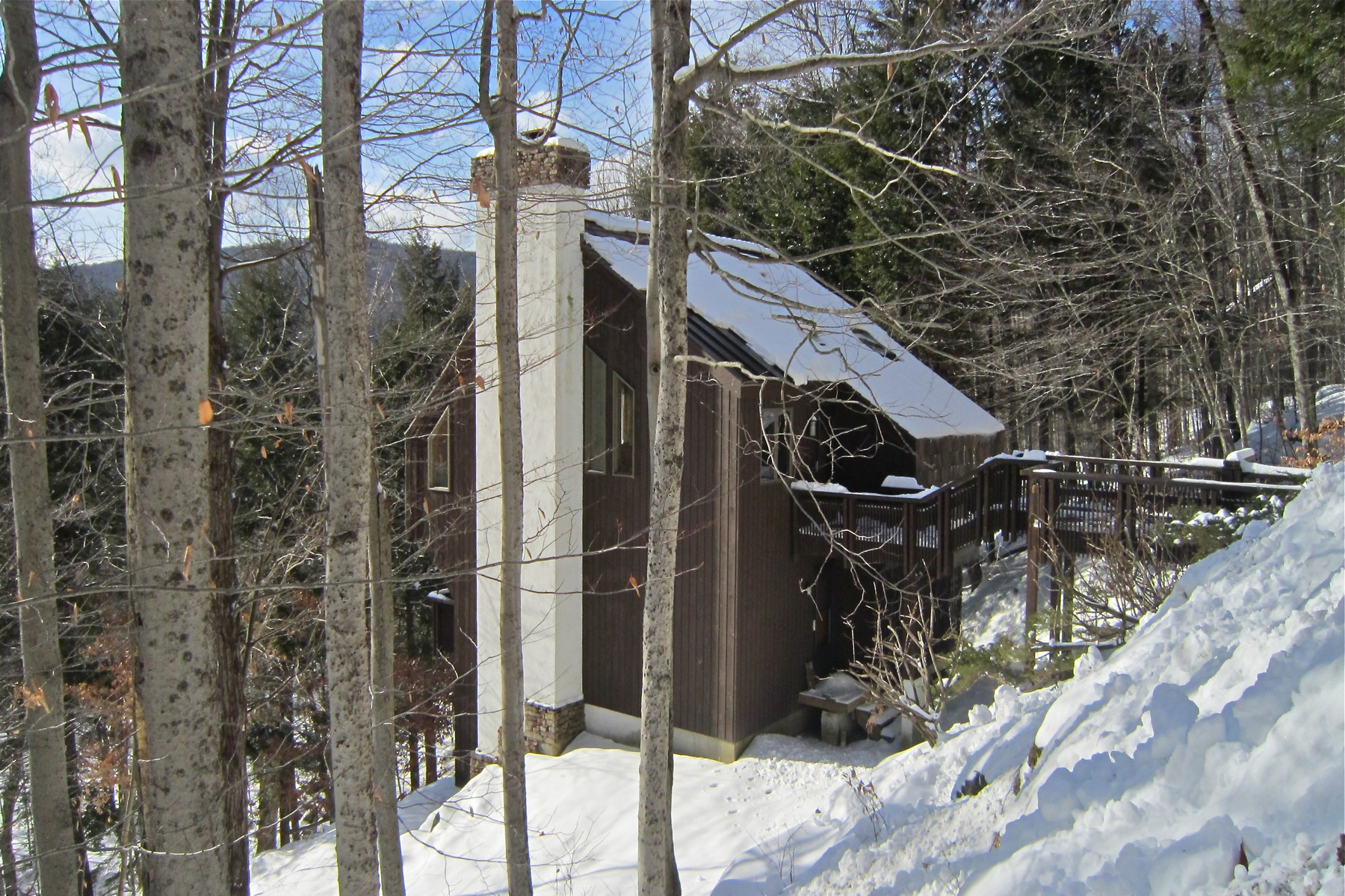 独户住宅 为 销售 在 Unique Hawk HOme 495 Kestrell Dr 普利茅斯, 佛蒙特州, 05056 美国