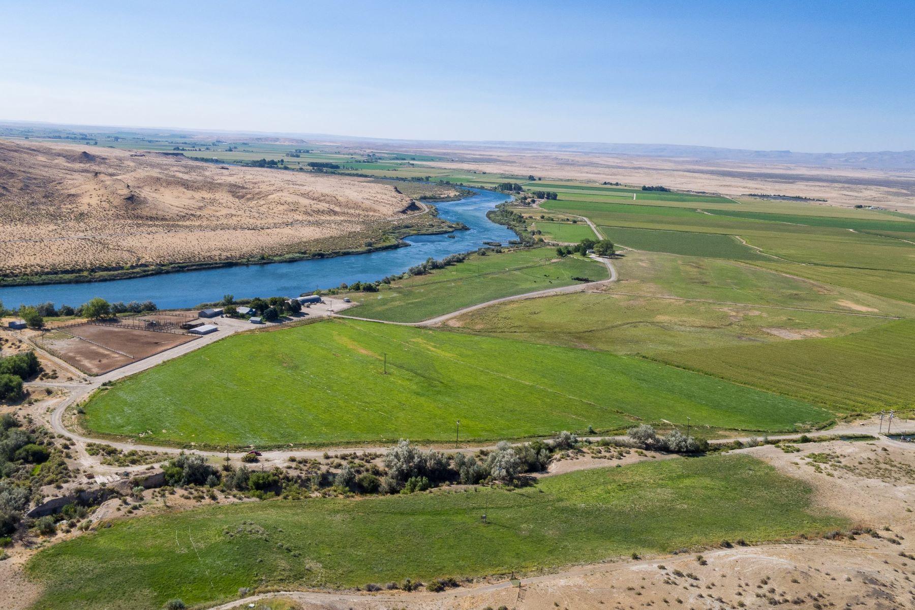Hayvan Çiftliği/Çiftlik/Ekili Alan için Satış at Bonus Cove Farm, Grand View Grand View, Idaho, 83624 Amerika Birleşik Devletleri