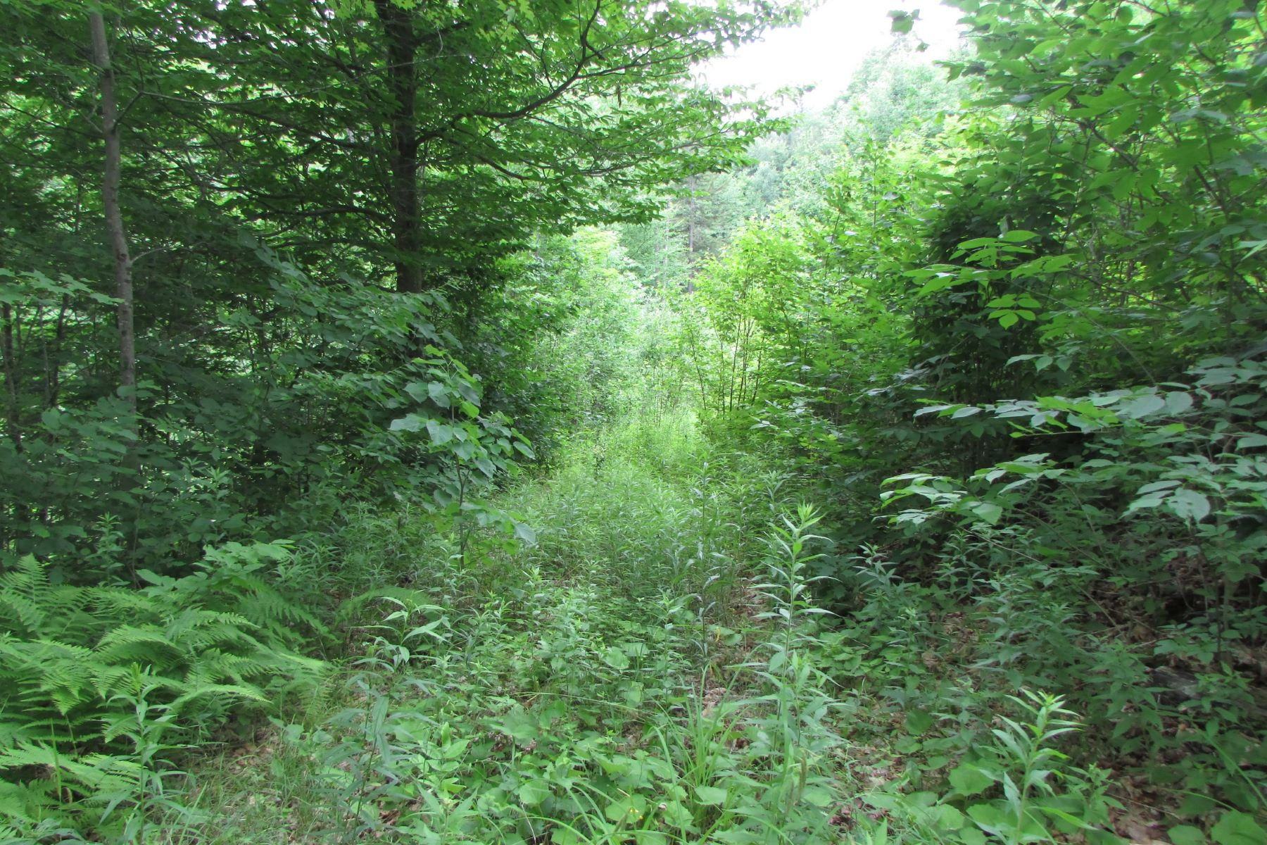 Land for Sale at Quiet Country Setting Upper Podunk Wardsboro, Vermont, 05360 United States