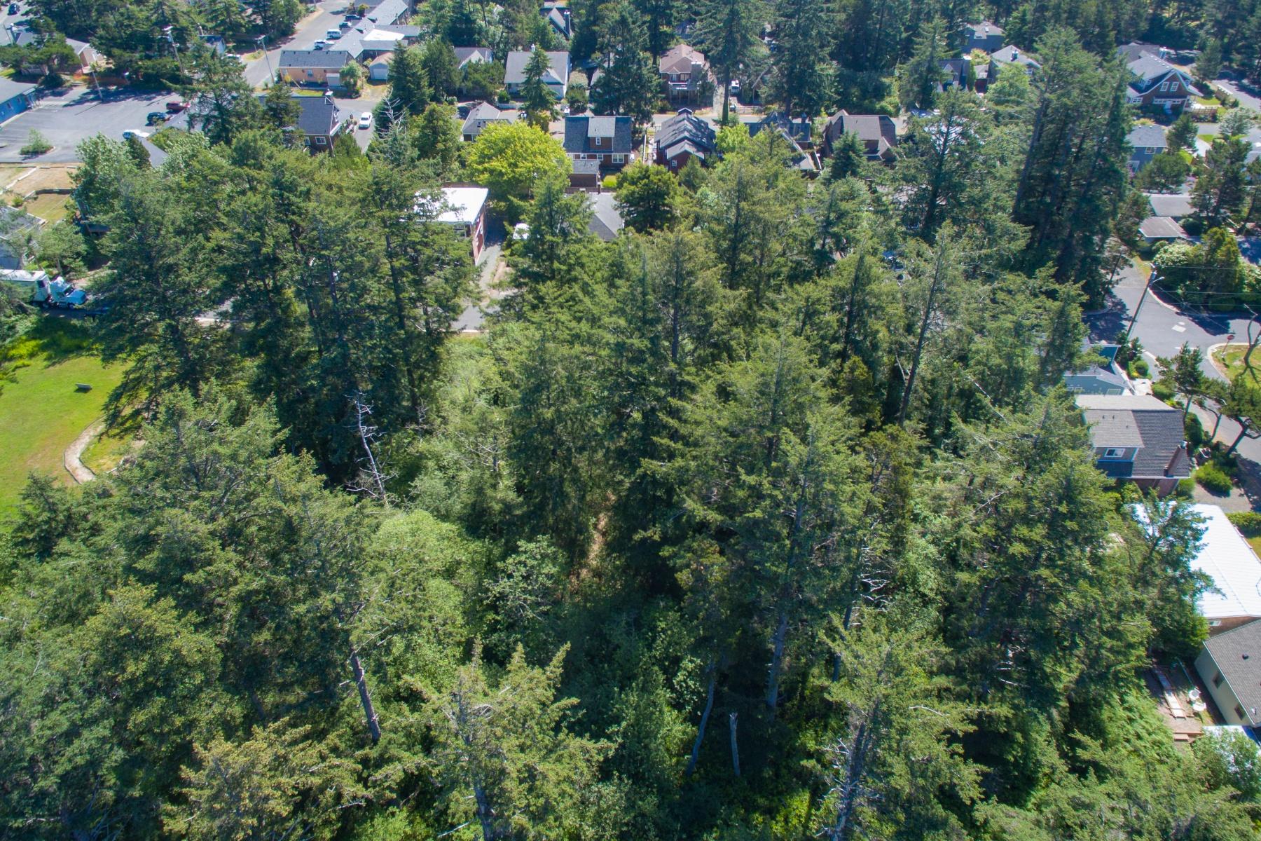 Land für Verkauf beim S S Third ST 200, MANZANITA, OR Manzanita, Oregon, 97130 Vereinigte Staaten