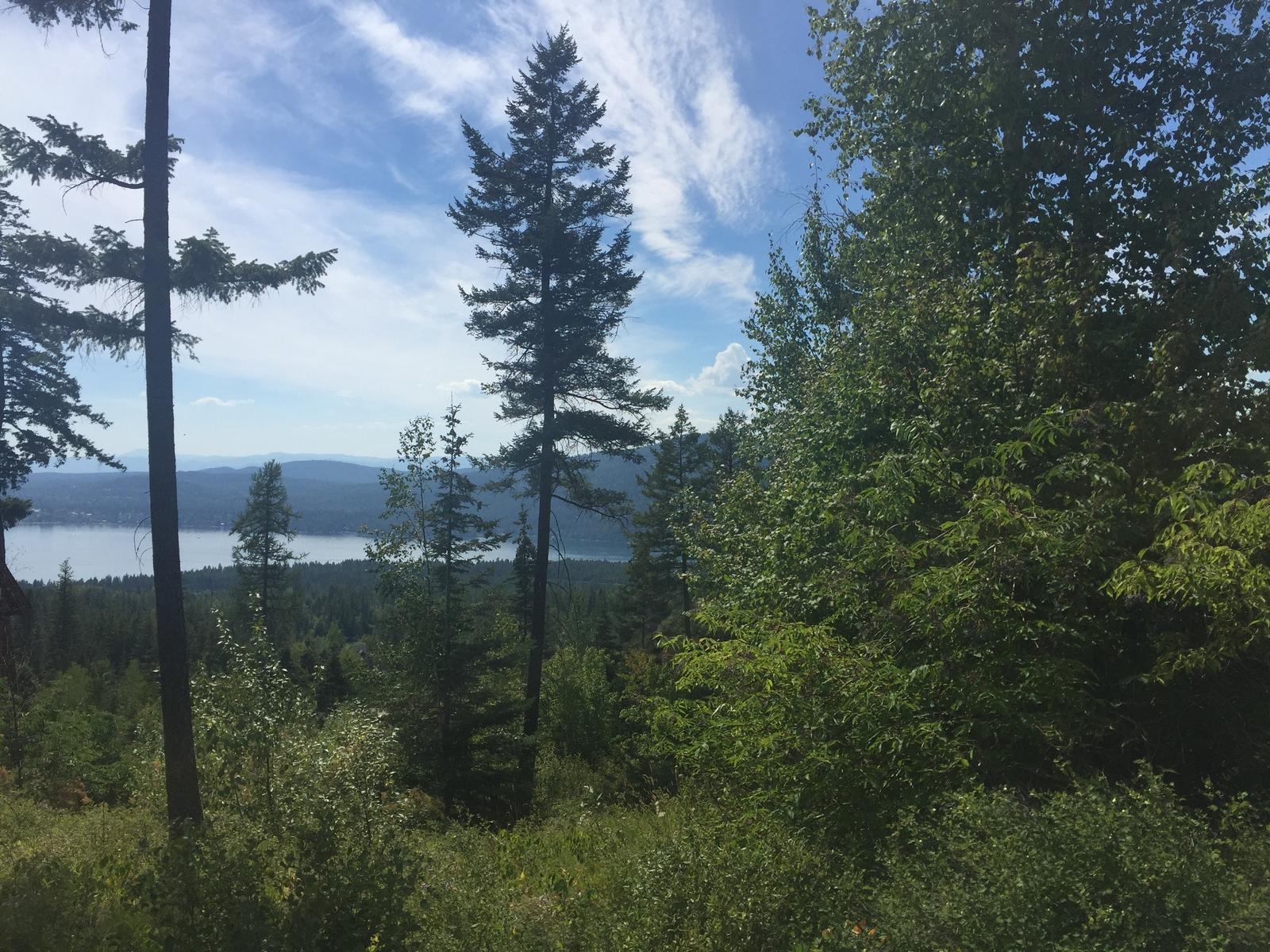 土地 為 出售 在 230 N Prairiesmoke Cir , Whitefish, MT 59937 Whitefish, 蒙大拿州, 59937 美國