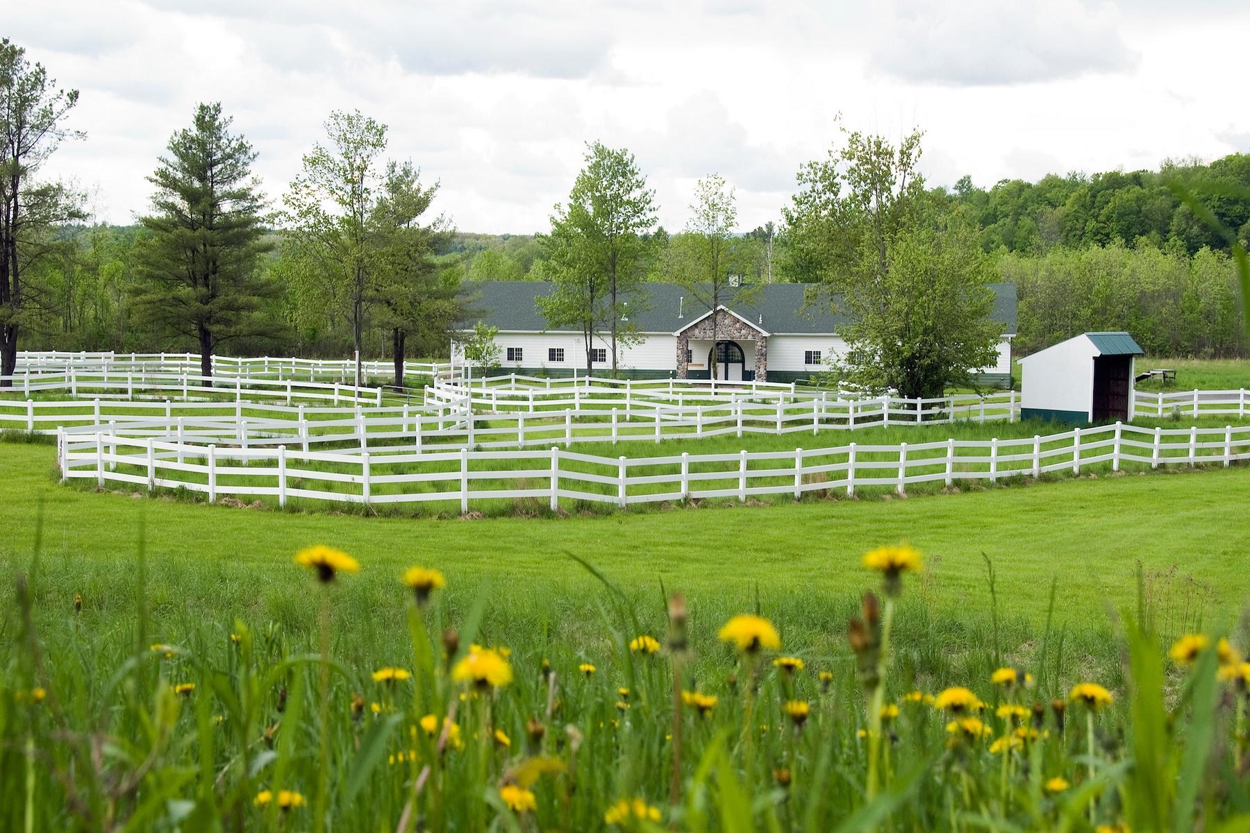 土地 为 销售 在 Winner's Circle Farm 120 Old Post Rd 马尔他, 纽约州 12020 美国