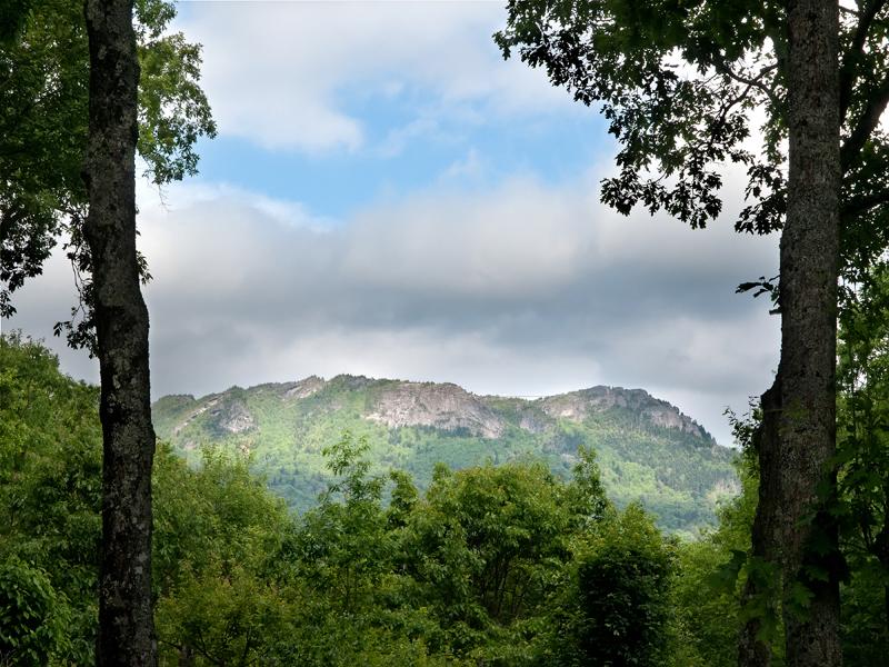 Terrain pour l Vente à LINVILLE RIDGE - SPLIT ROCK ESTATES 1706 Forest Ridge Dr 17 Linville, Carolina Du Nord, 28646 États-Unis