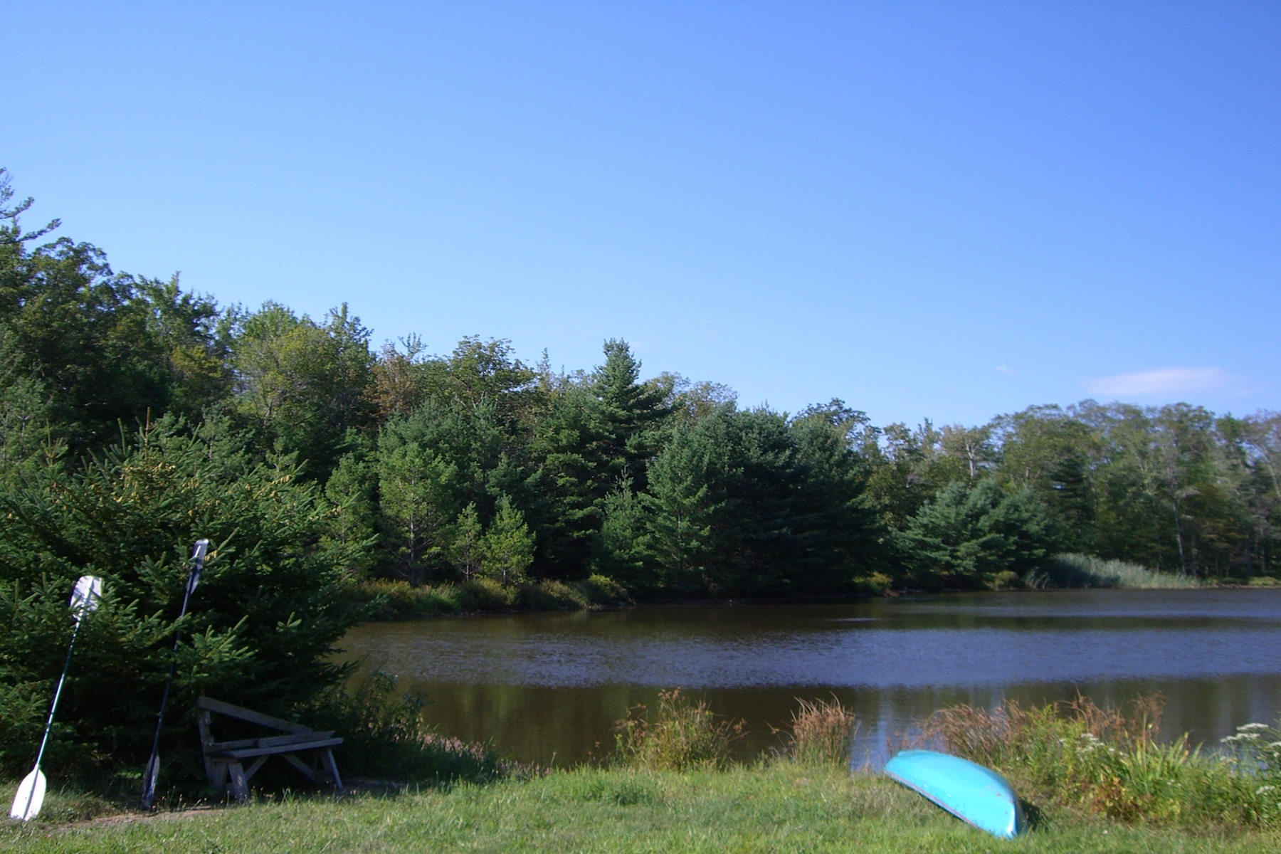 Additional photo for property listing at Cudney Place 260  Peck Rd Shokan, New York 12481 États-Unis