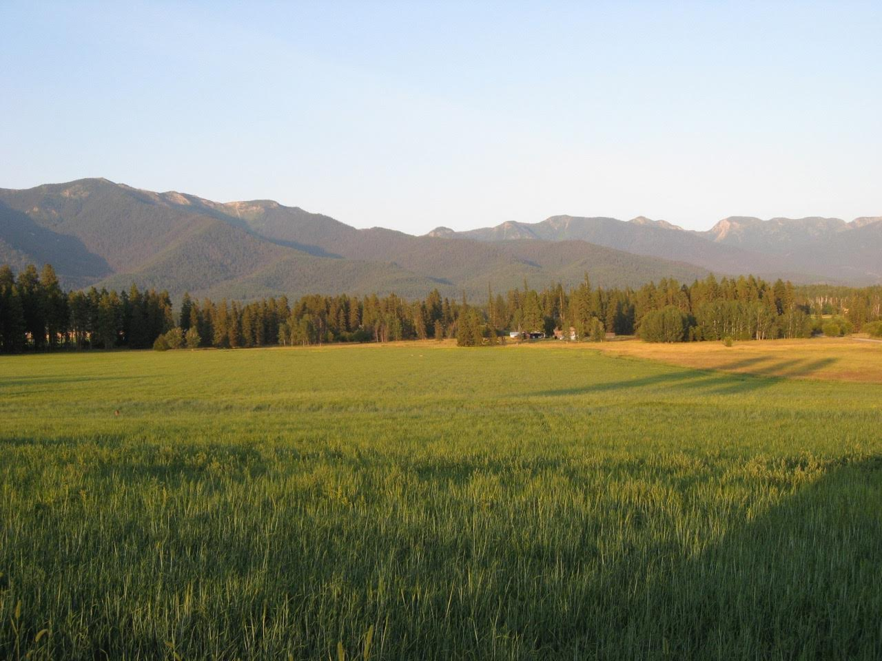 Property For Sale Kalispell