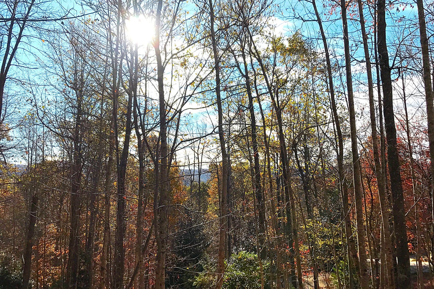Terreno para Venda às OLETA FALLS 527 Overlook Park Dr 78 Phase II Hendersonville, Carolina Do Norte, 28792 Estados Unidos