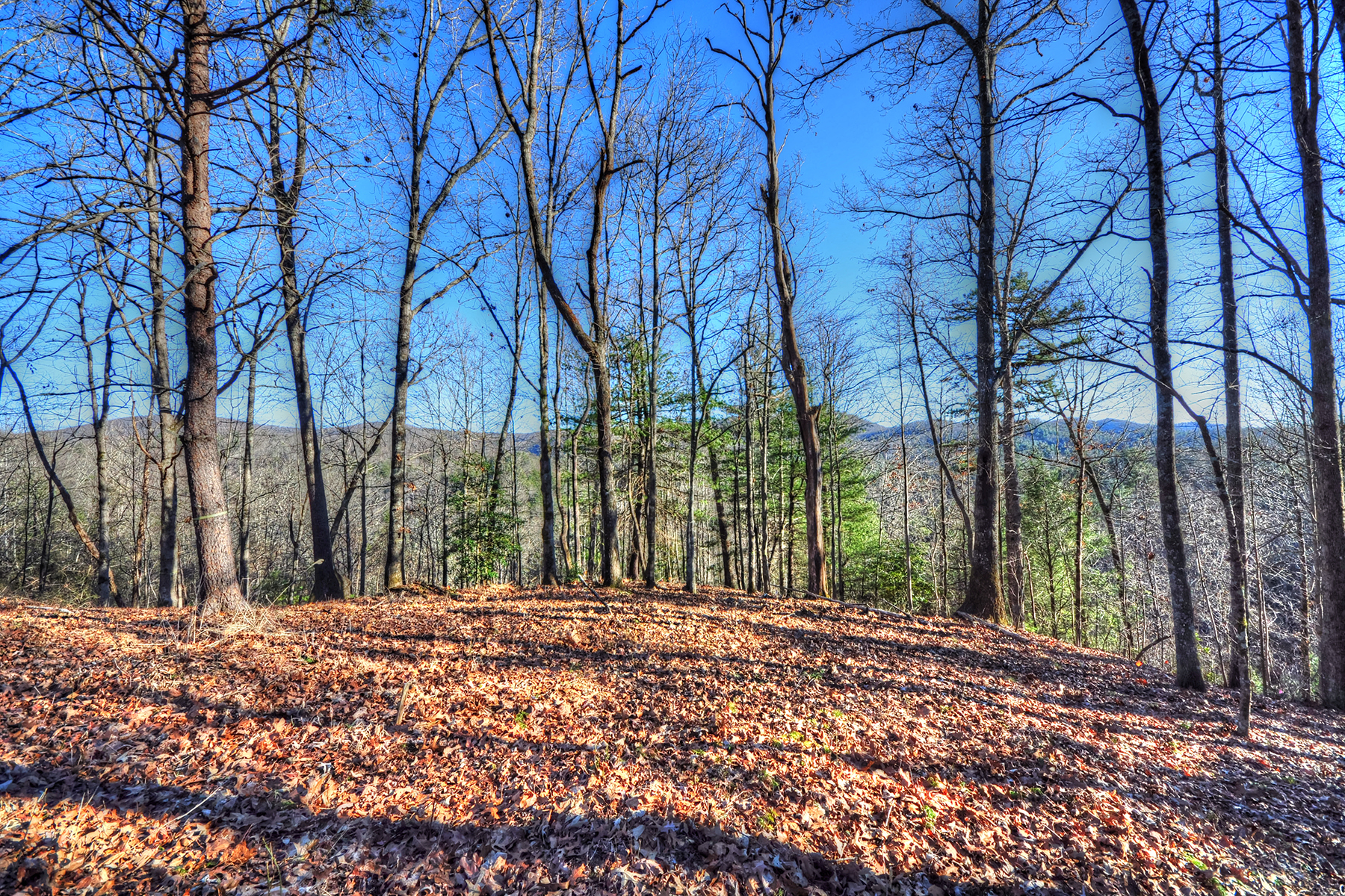 Terreno para Venda às OLETA FALLS 110 Stone Valley Way 20 Hendersonville, Carolina Do Norte, 28792 Estados Unidos