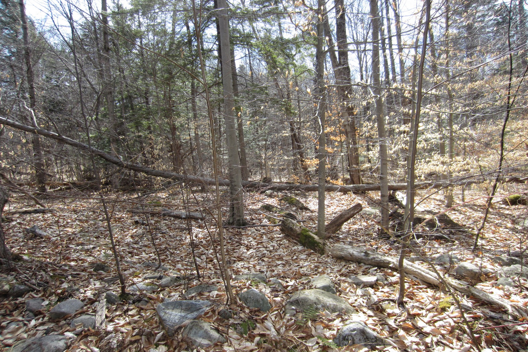 Terreno por un Venta en Building Lot 25 Lincoln Mountain Rd Greenfield, Nueva York 12833 Estados Unidos