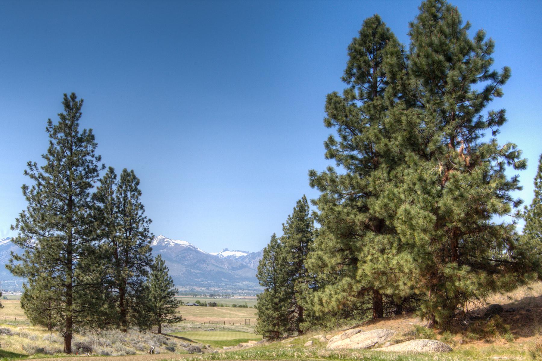 Land for Sale at Lot 66 Stock Farm Lot 66 Stock Farm Rd Hamilton, Montana 59840 United States