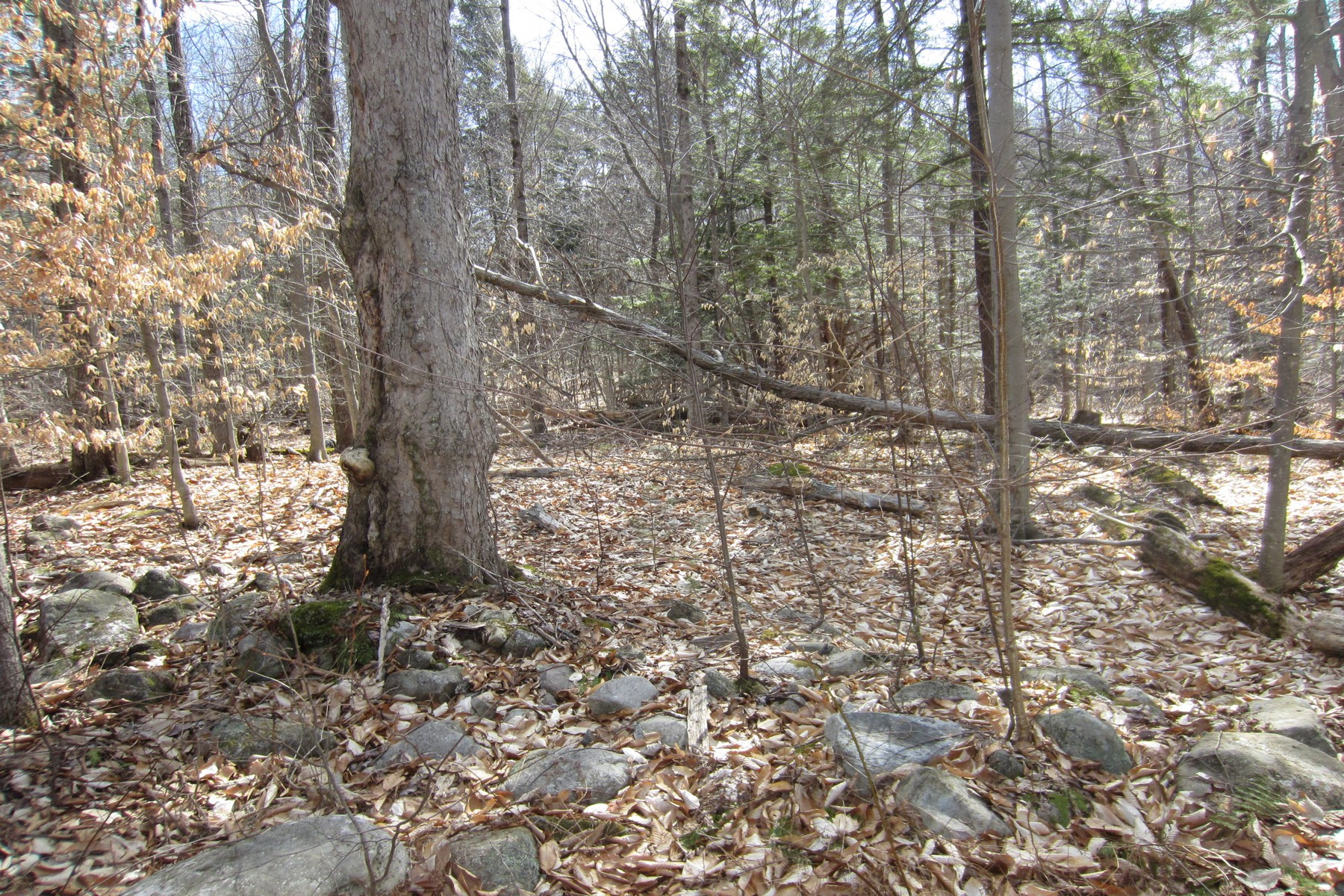Additional photo for property listing at Building Lot 25  Lincoln Mountain Rd Greenfield, New York 12833 United States