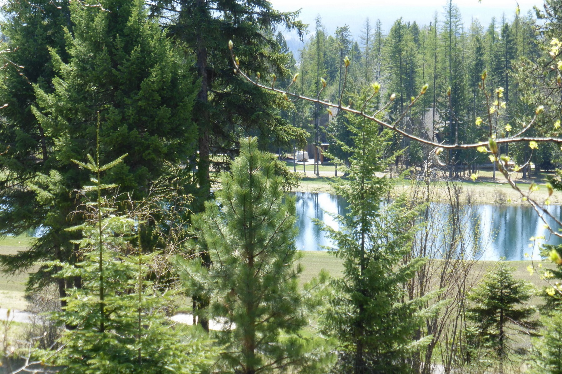 Additional photo for property listing at Iron Horse Cabin Overlooking the 18th Fairway 2225  Larkspur Ln Whitefish, Montana 59937 United States