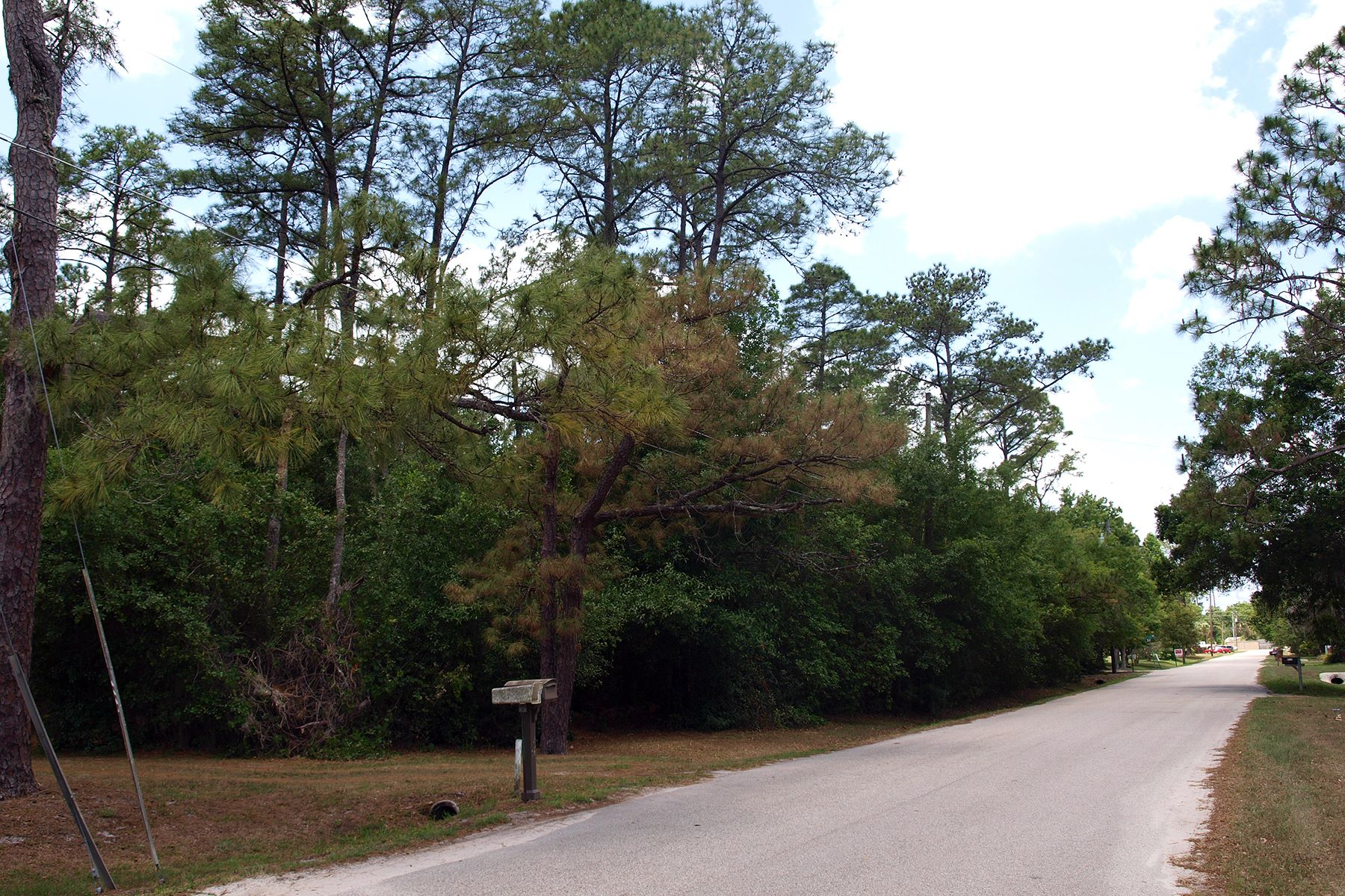 Land for Sale at ORLANDO 9124 Fryland Rd 4, Orlando, Florida 32817 United States