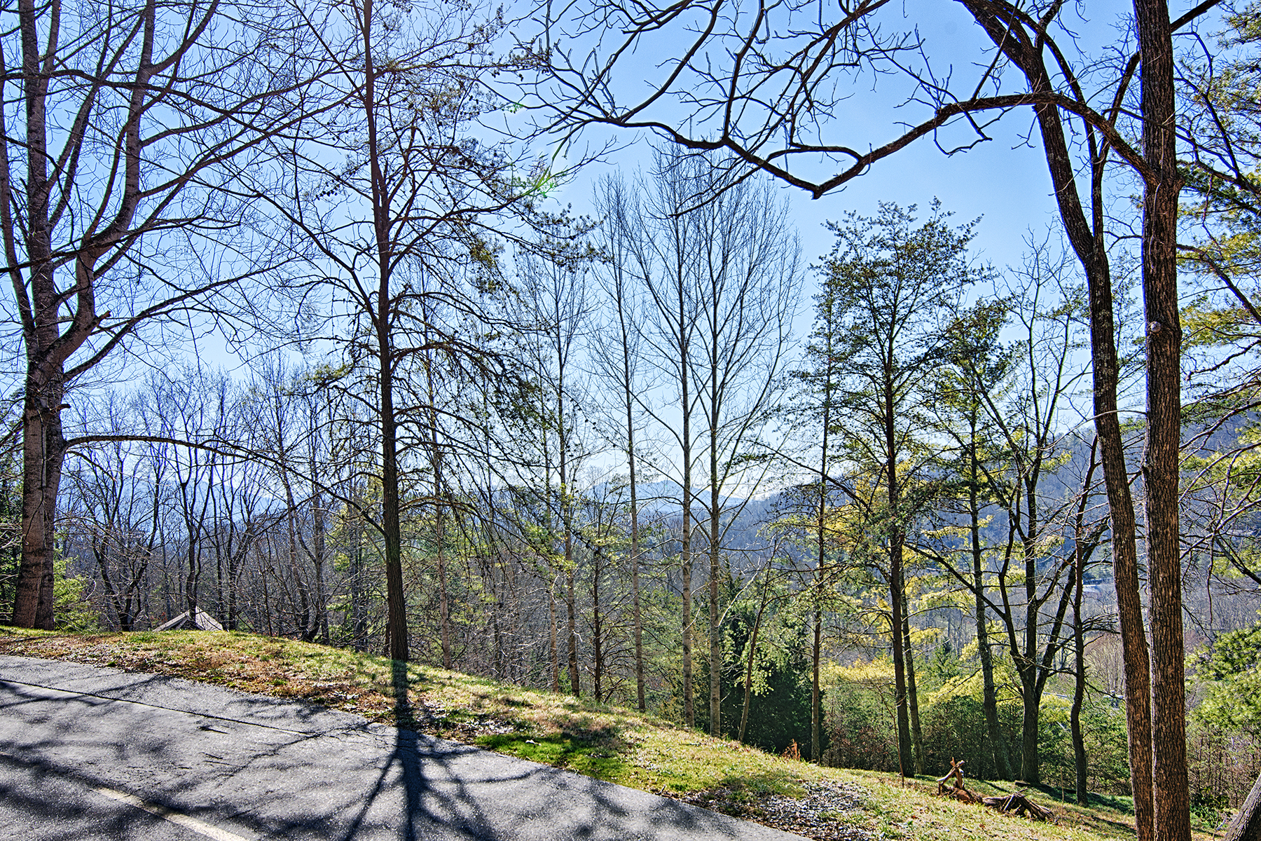 Land for Sale at BUFFALO MOUNTAIN 110 Buffalo Trl 10, Asheville, North Carolina 28805 United States