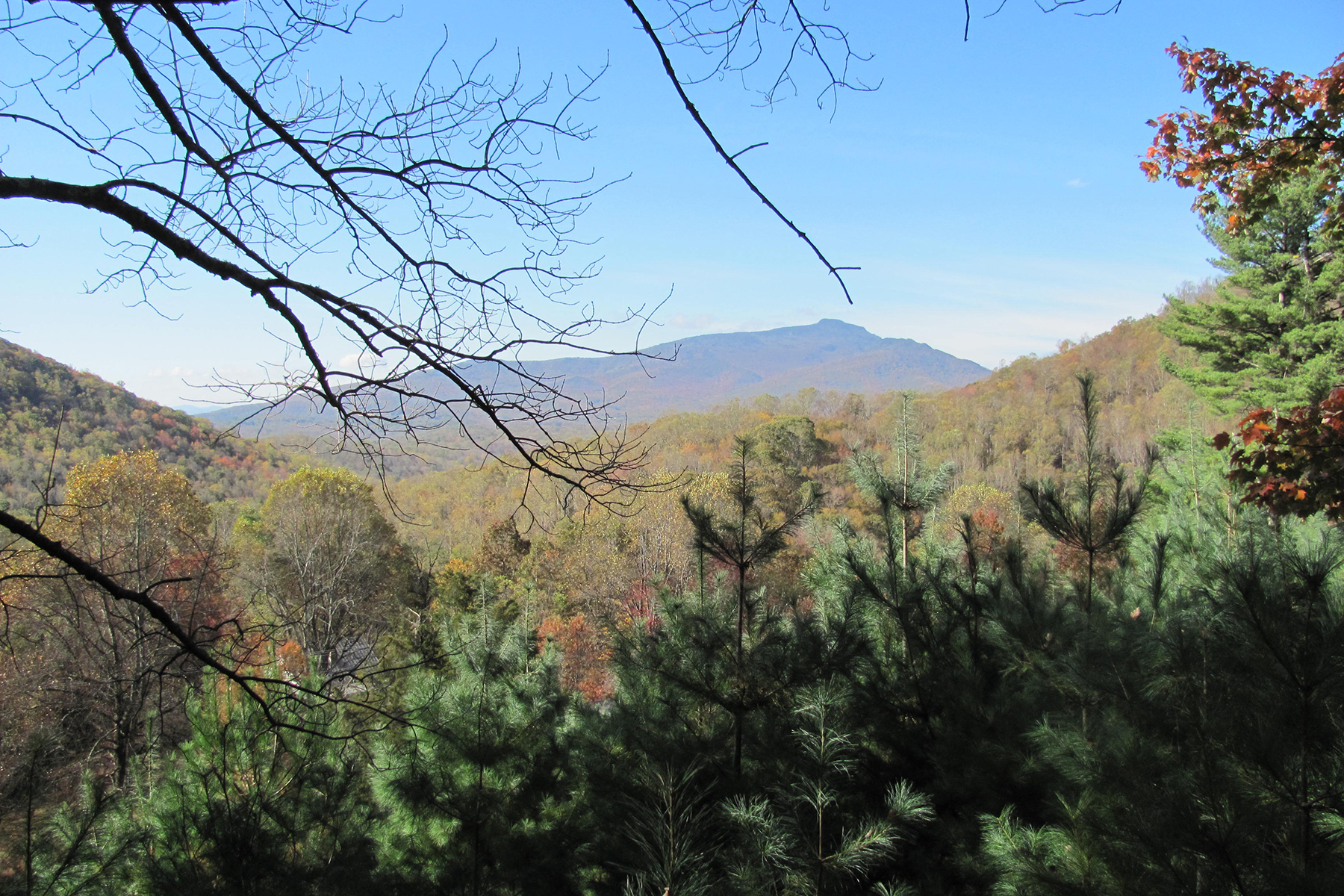 Single Family Home for Sale at 40 ACRE ESTATE - BLOWING ROCK 3914/ 3916 Shulls Mill Rd Blowing Rock, North Carolina 28605 United States