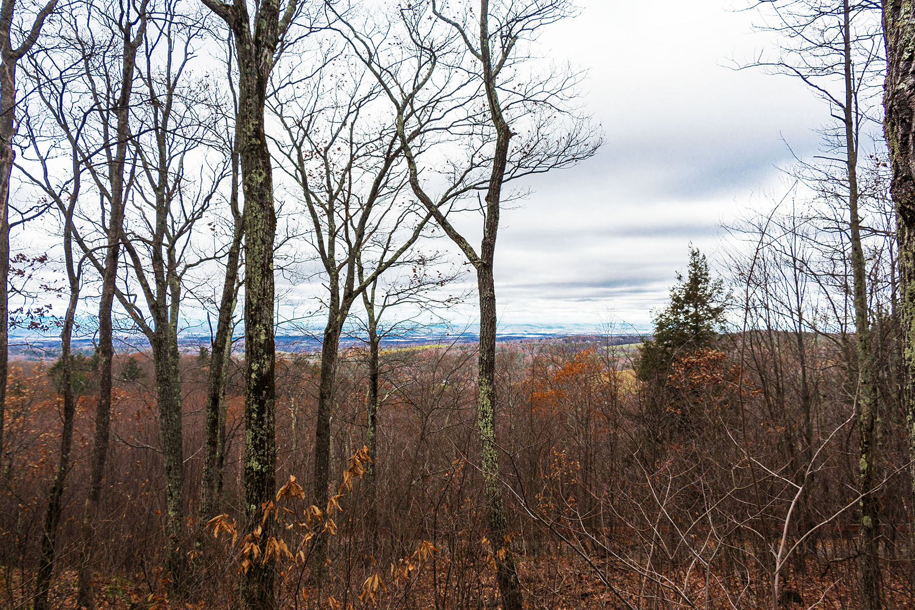 Additional photo for property listing at Dramatic Mountain Views 4  Madison Avenue East Chatham, New York 12060 United States