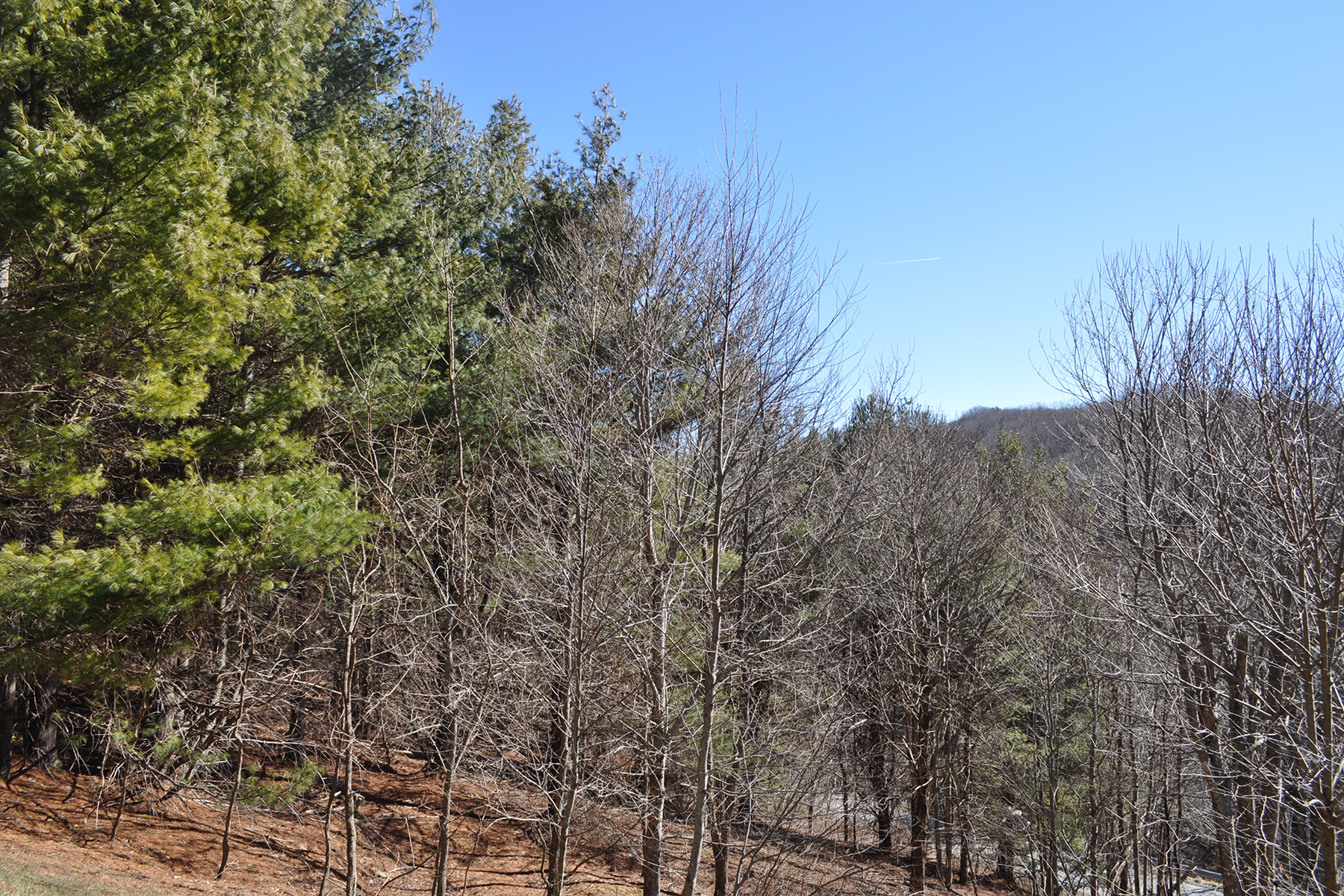 Land for Sale at BLOWING ROCK - SORRENTO SKIES Tba Picasso Dr Blowing Rock, North Carolina 28605 United States