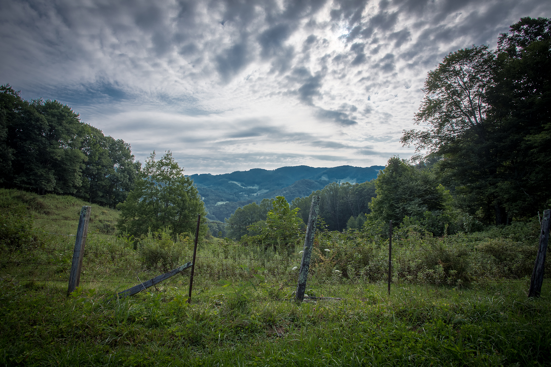 Additional photo for property listing at BETHAL VALLEY FARMS - VILAS 2912  Mountain Dale Rd,  Vilas, 北卡罗来纳州 28692 美国