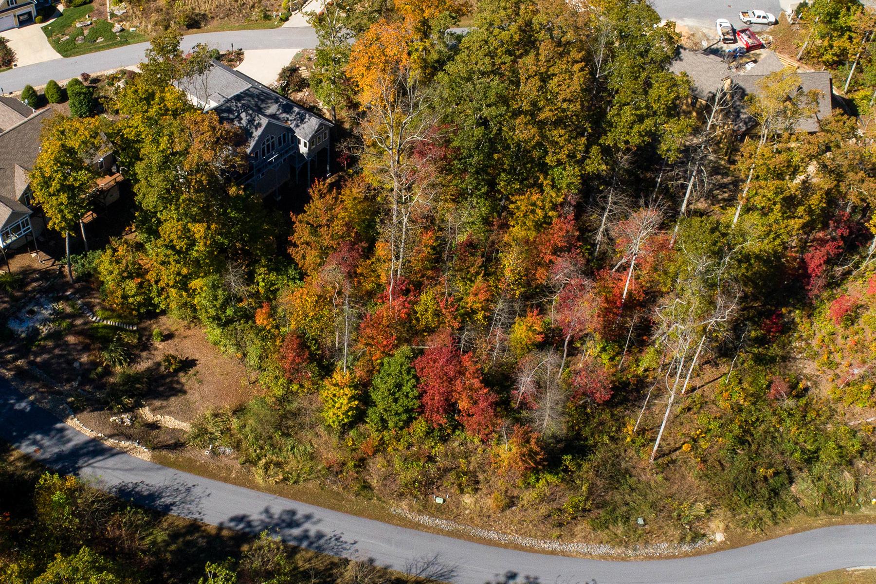 土地,用地 为 销售 在 CARRIAGE PARK 77 Millbrae Loop 1663, 亨德森维尔, 北卡罗来纳州, 28791 美国