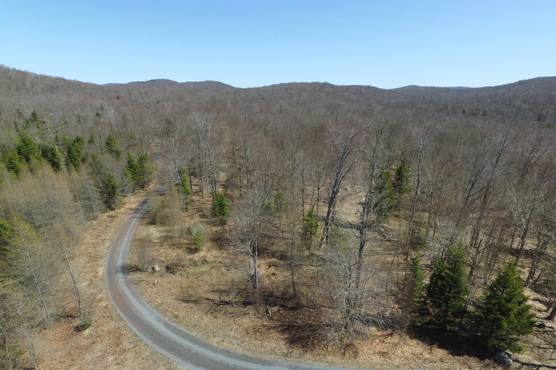 Additional photo for property listing at Adirondack Land For Sale 1515-C  Nys Route 28 Thendara, 纽约州 13472 美国