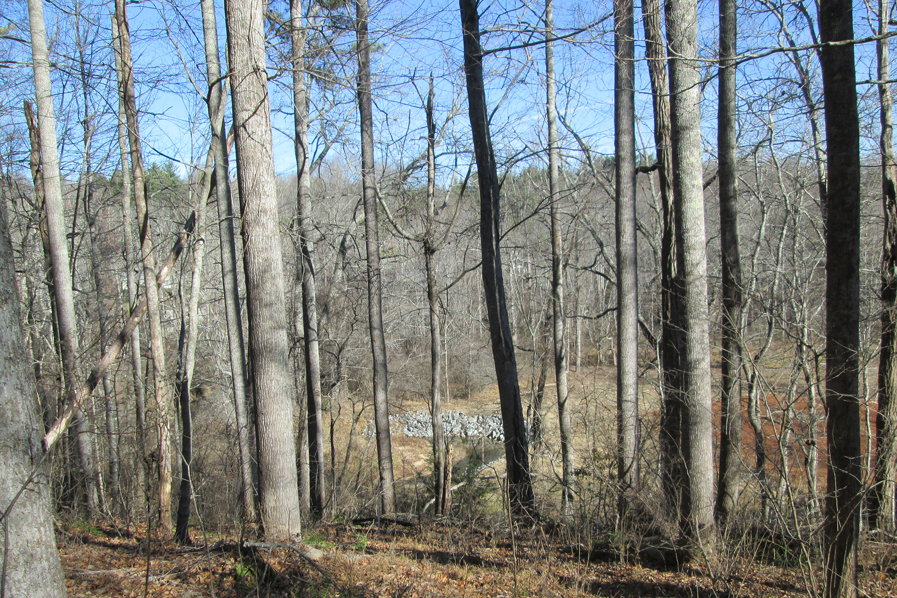 Land for Sale at THE CLIFFS AT WALNUT COVE 47 Misty Valley Pkwy Arden, North Carolina, 28704 United StatesIn/Around: Asheville