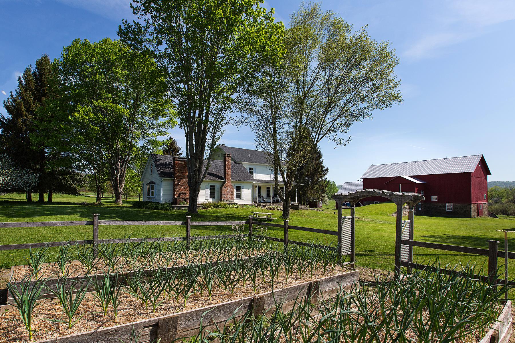 Single Family Home for Sale at Hemlock Hill Farm 380 Raymond Fish Rd Hartwick, New York 13348 United States