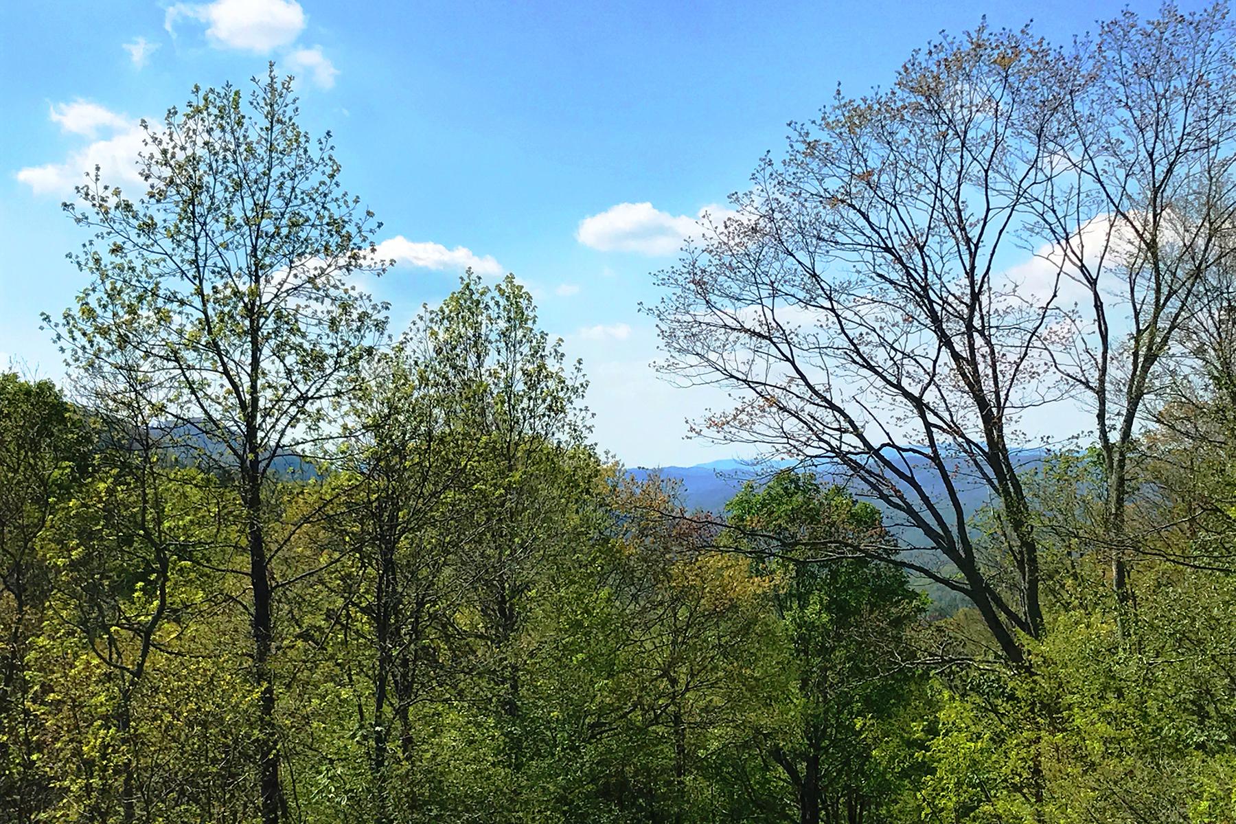 Additional photo for property listing at NEWLAND TBD  Turbyfill Rd,  Newland, North Carolina 28657 United States