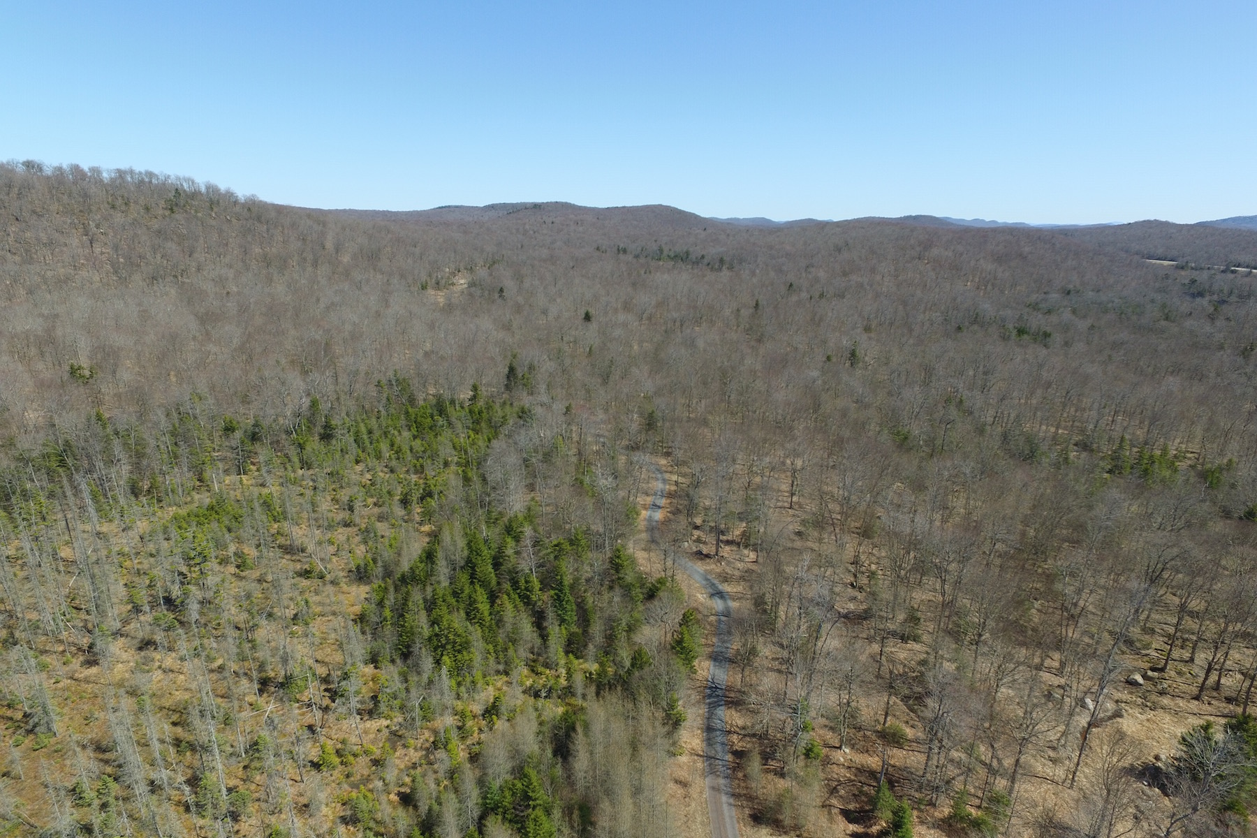 Additional photo for property listing at Adirondack Land For Sale 1515-A  Nys Route 28 Thendara, New York 13472 United States