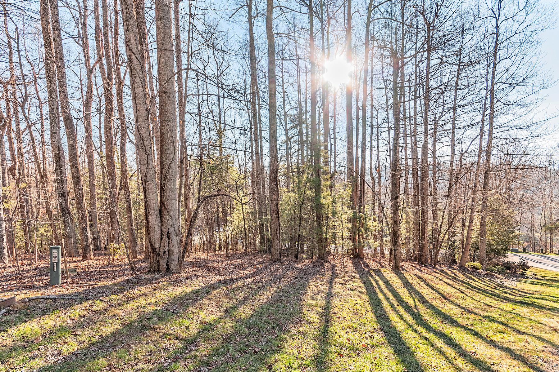 Land for Sale at PREMIUM BUILD SITE IN CHAMPION HILLS 200 Bent Pine 162, Hendersonville, North Carolina 28739 United States