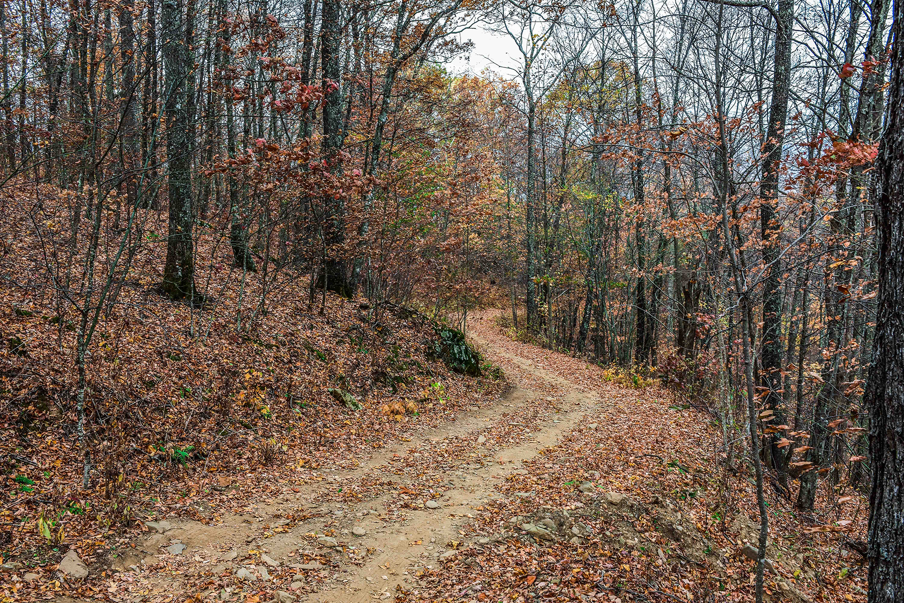 Additional photo for property listing at RICHLAND KNOB 9999  Ox Creek Rd,  Weaverville, North Carolina 28787 United States