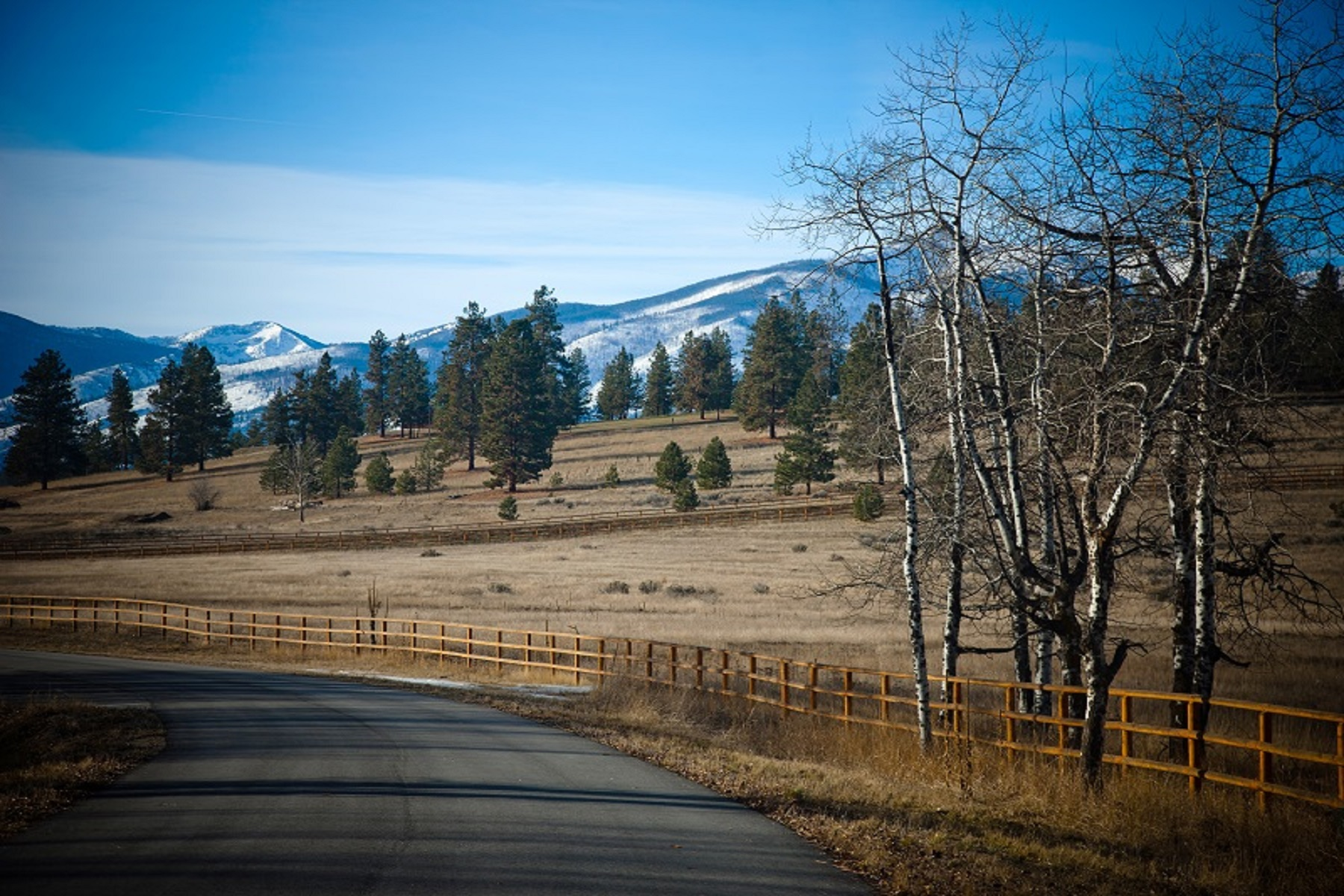 Additional photo for property listing at Lot 13 Hillside Ranch Rd Lot 13  Hillside Ranch Rd Victor, Montana 59875 United States