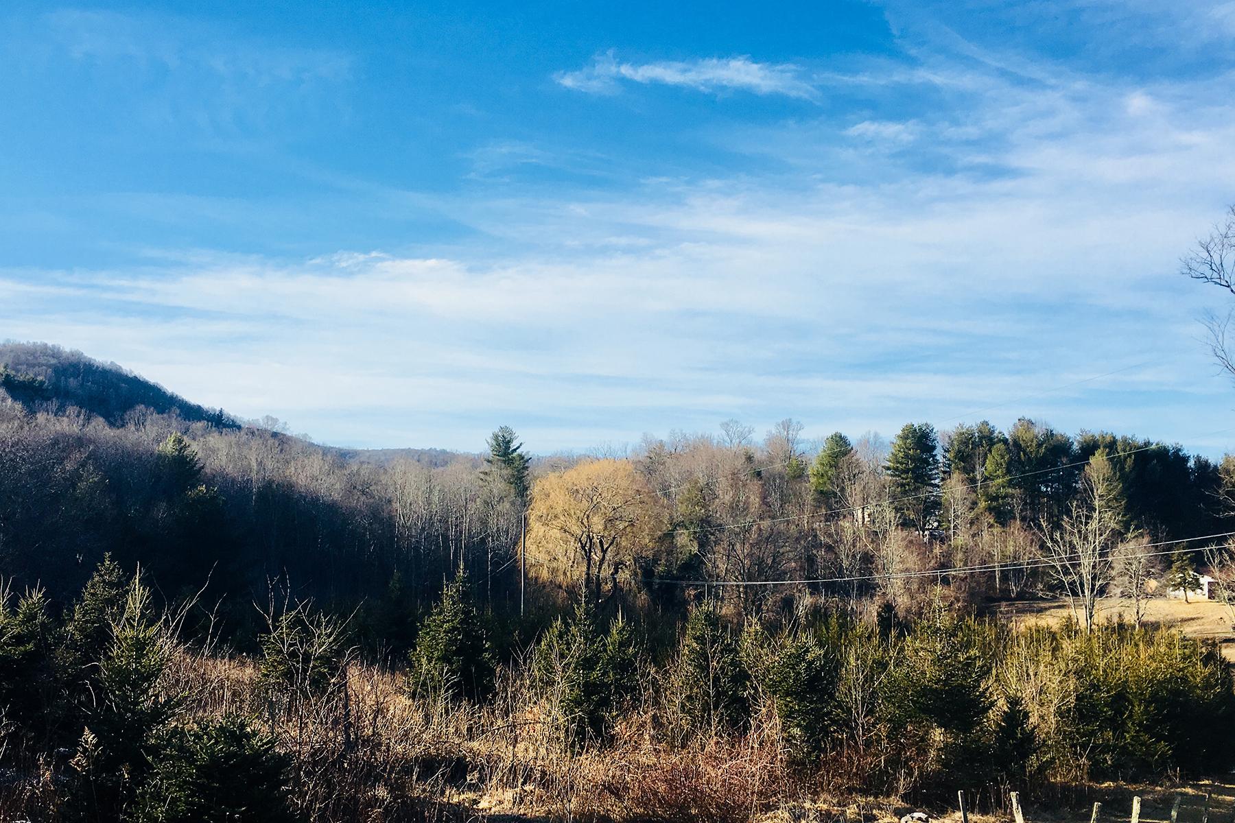 أراضي للـ Sale في SPRUCE PINE TBD Dale Rd, Spruce Pine, North Carolina, 28777 United States