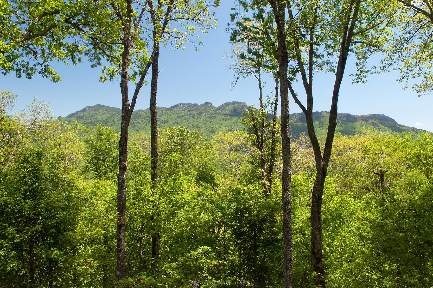 土地,用地 为 销售 在 LINVILLE RIDGE - SPLIT ROCK ESTATES 1712 Boulder Hollow Rd 17, 林维尔, 北卡罗来纳州, 28646 美国