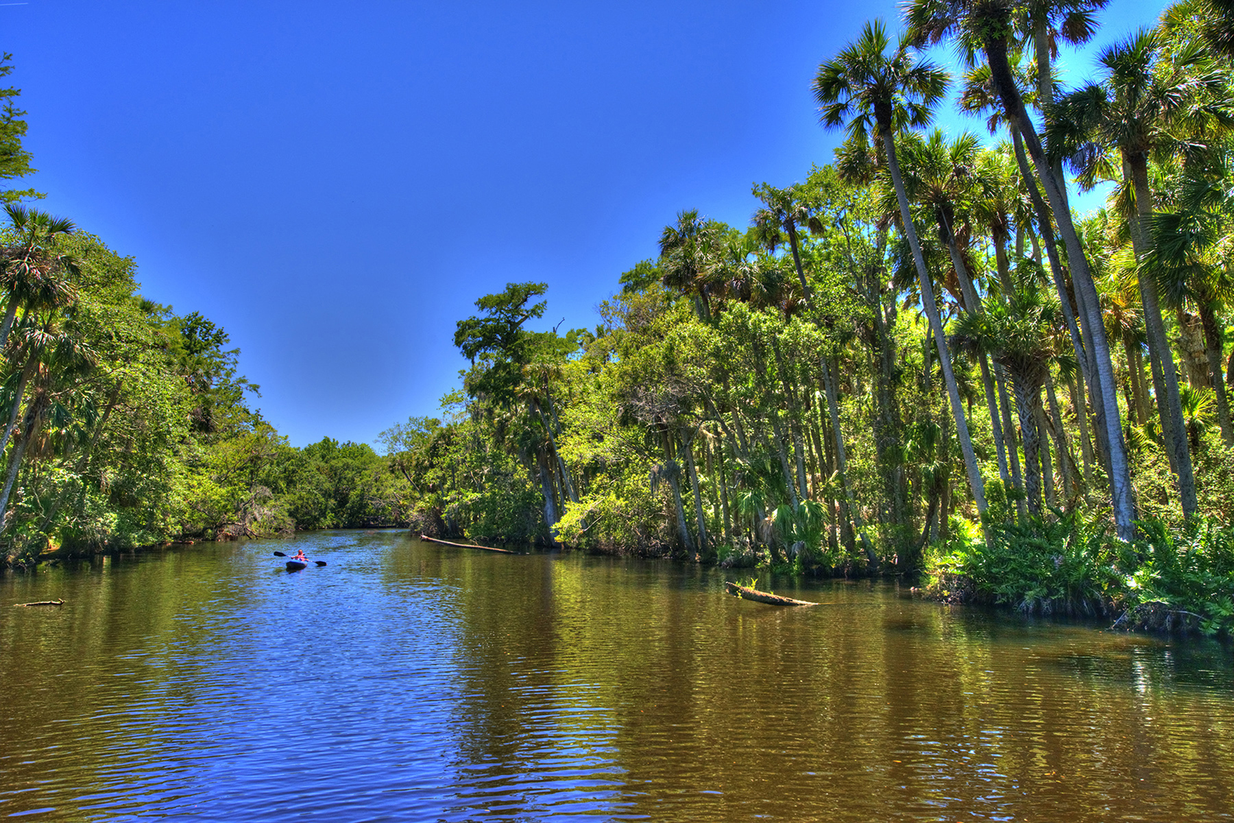 Additional photo for property listing at 1785 Taylor Rd , 3 lots, Port Orange, FL 32128 1785  Taylor Rd 3 lots,  Port Orange, Florida 32128 United States