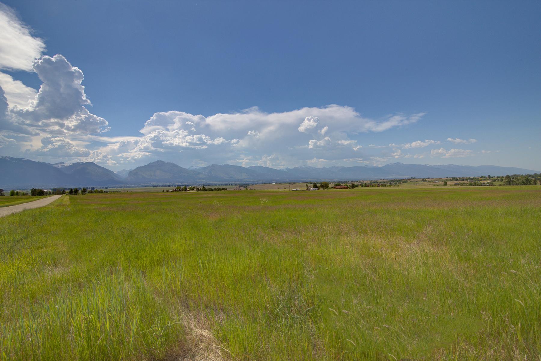 Land for Sale at Lot 7B Palfiena Trail, Hamilton, MT 59840 Lot 7b Palfiena Trl Hamilton, Montana, 59840 United States