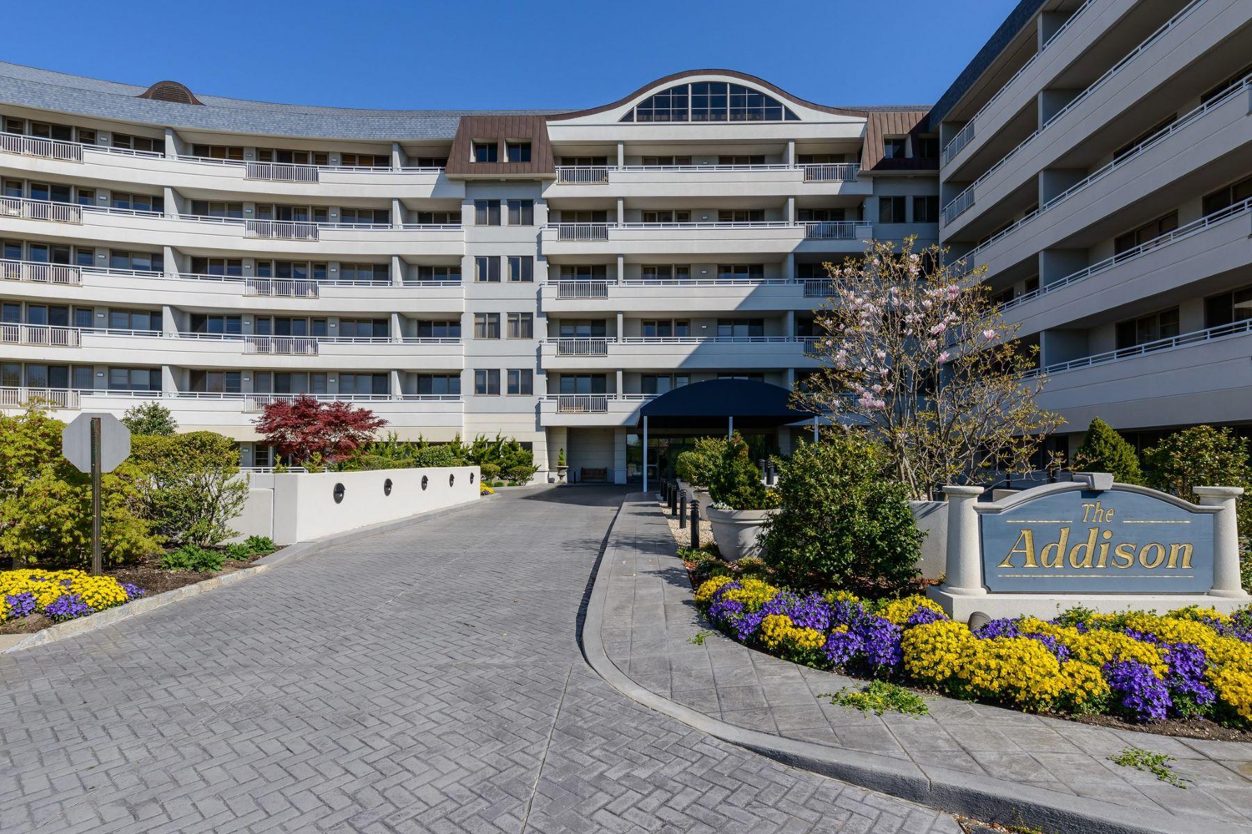 公寓 为 出租 在 100 Harbor View , Port Washington, NY 11050 100 Harbor View, 华盛顿港, 纽约州, 11050 美国