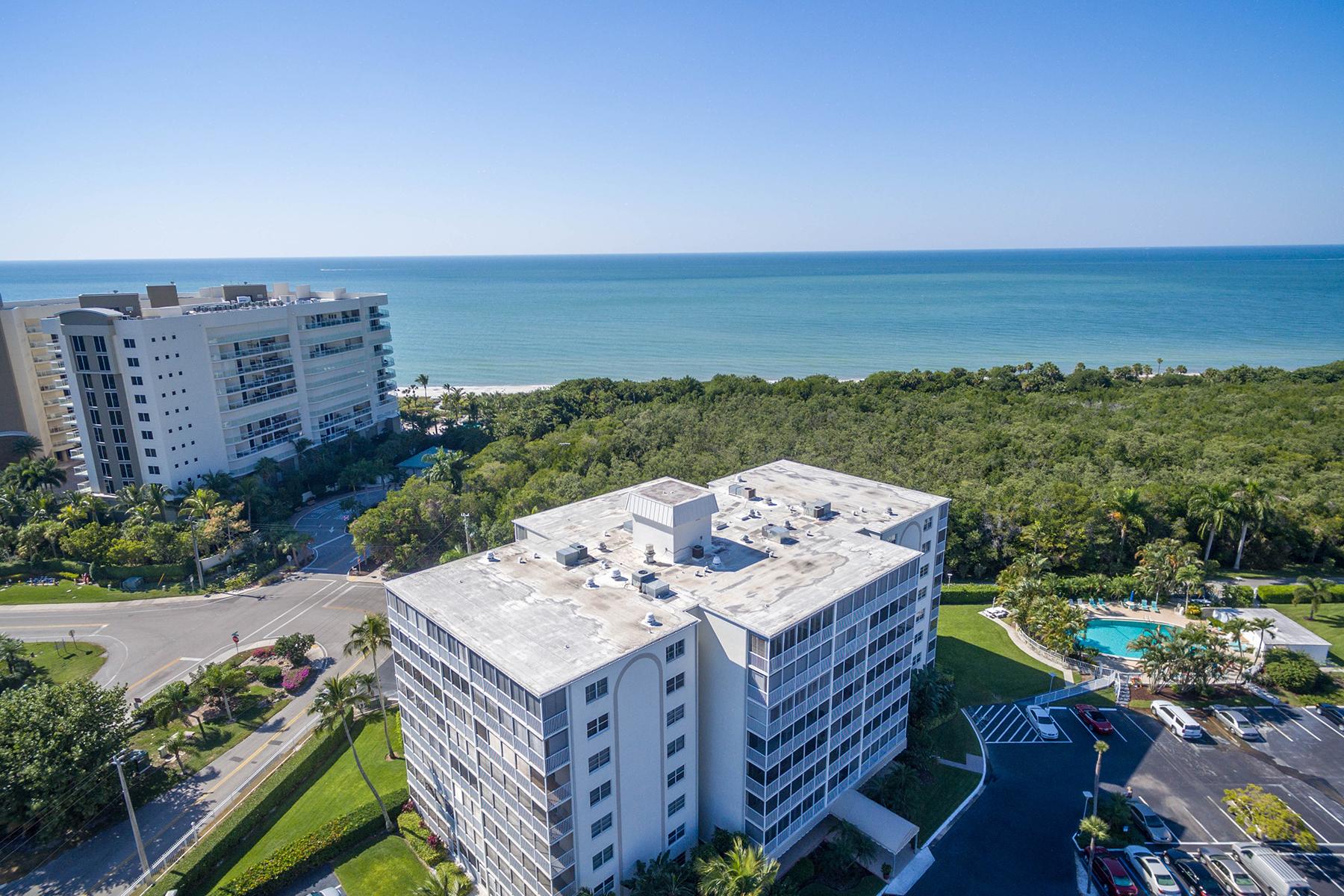Appartement en copropriété pour l Vente à VANDERBILT BEACH 1 Bluebill Ave 311 Naples, Florida, 34108 États-Unis