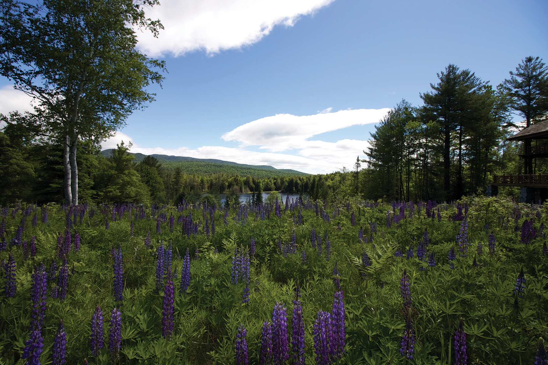 Additional photo for property listing at Skye Notch 490  Loch Muller Rd Schroon Lake, ニューヨーク 12870 アメリカ合衆国