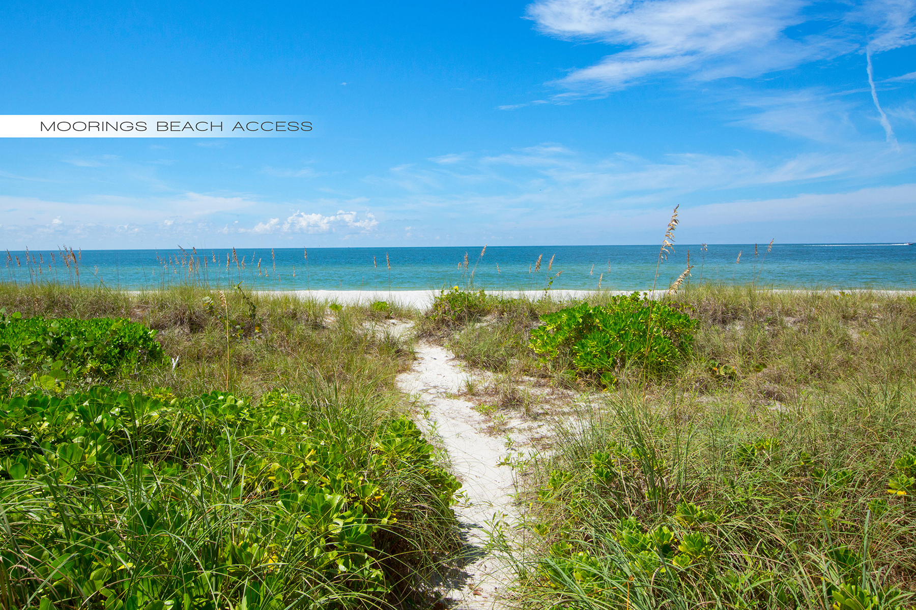 Additional photo for property listing at Naples 383  Cuddy Ct,  Naples, Florida 34103 United States