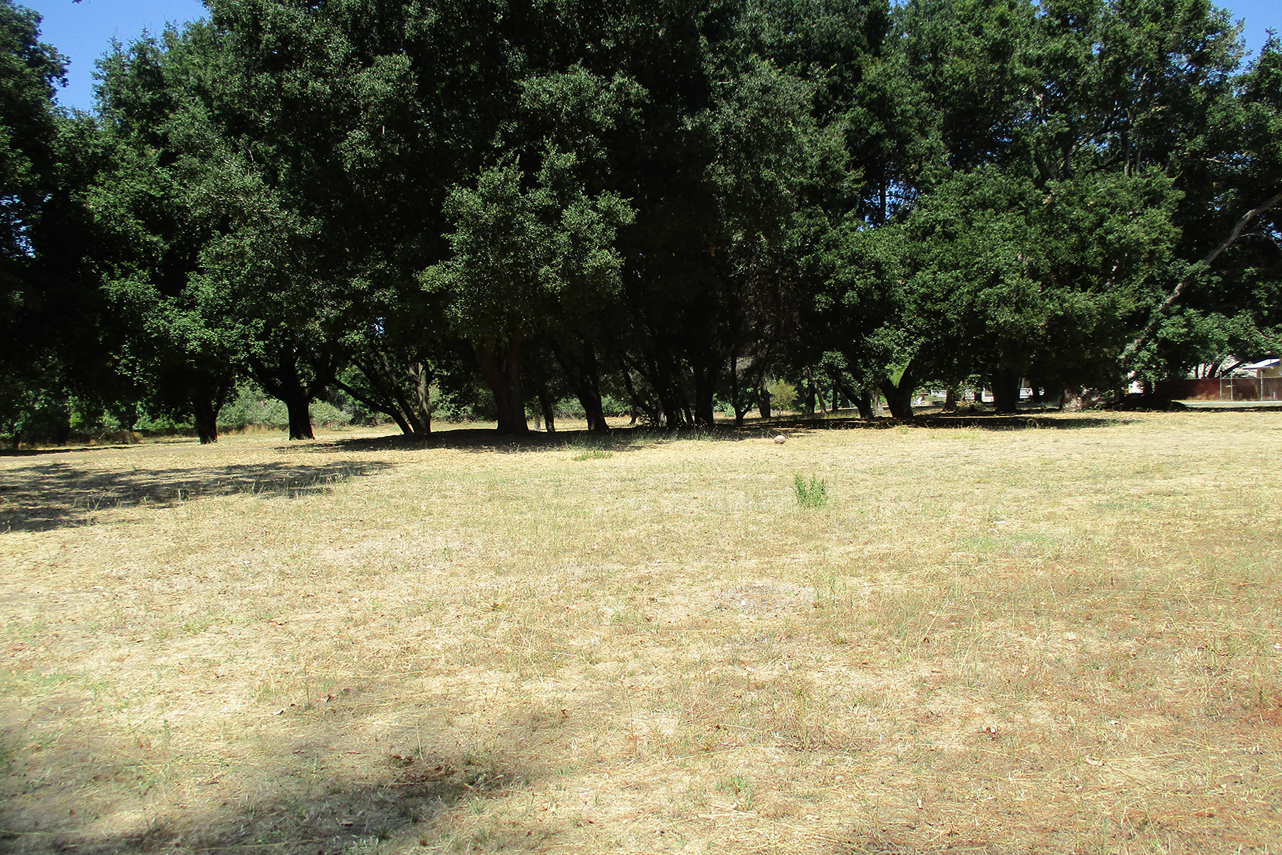 Terreno por un Venta en Over Six Acres of Exceptional Development Opportunity 5050 Old Redwood Hwy Santa Rosa, California, 95403 Estados Unidos