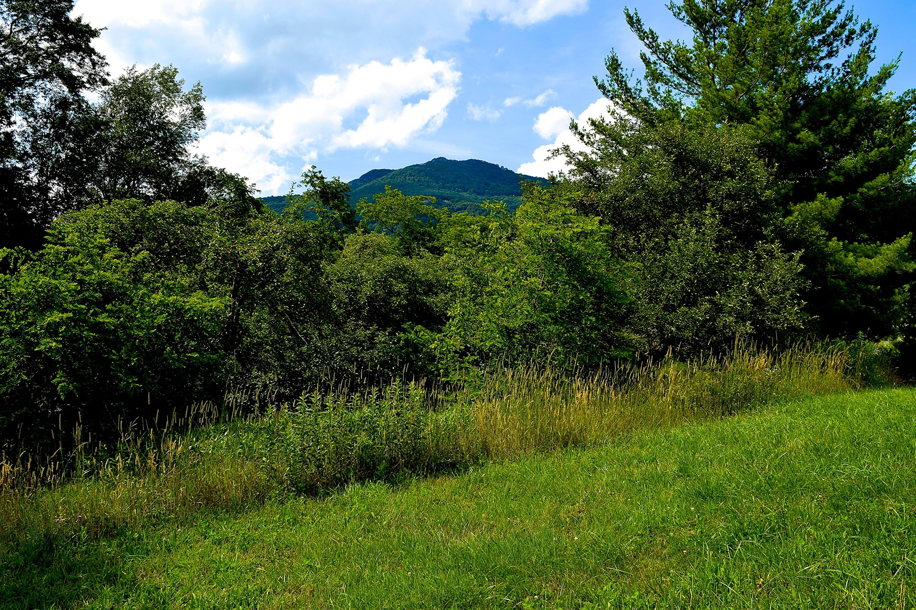 Terrain pour l Vente à BANNER ELK TBD High Lowe Lane Banner Elk, Carolina Du Nord, 28604 États-Unis