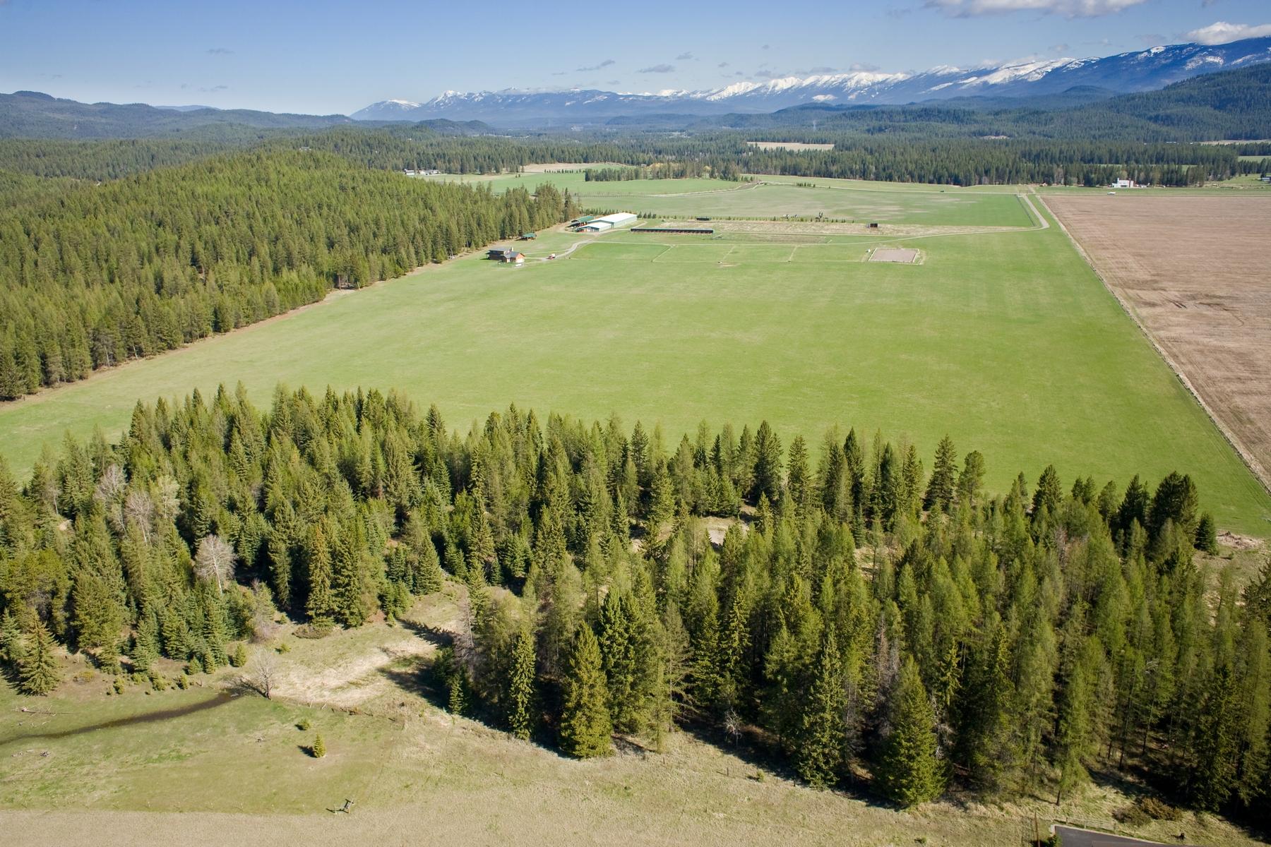 Terreno por un Venta en 573 Twin Bridges Rd , Whitefish, MT 59937 573 Twin Bridges Rd Whitefish, Montana, 59937 Estados Unidos