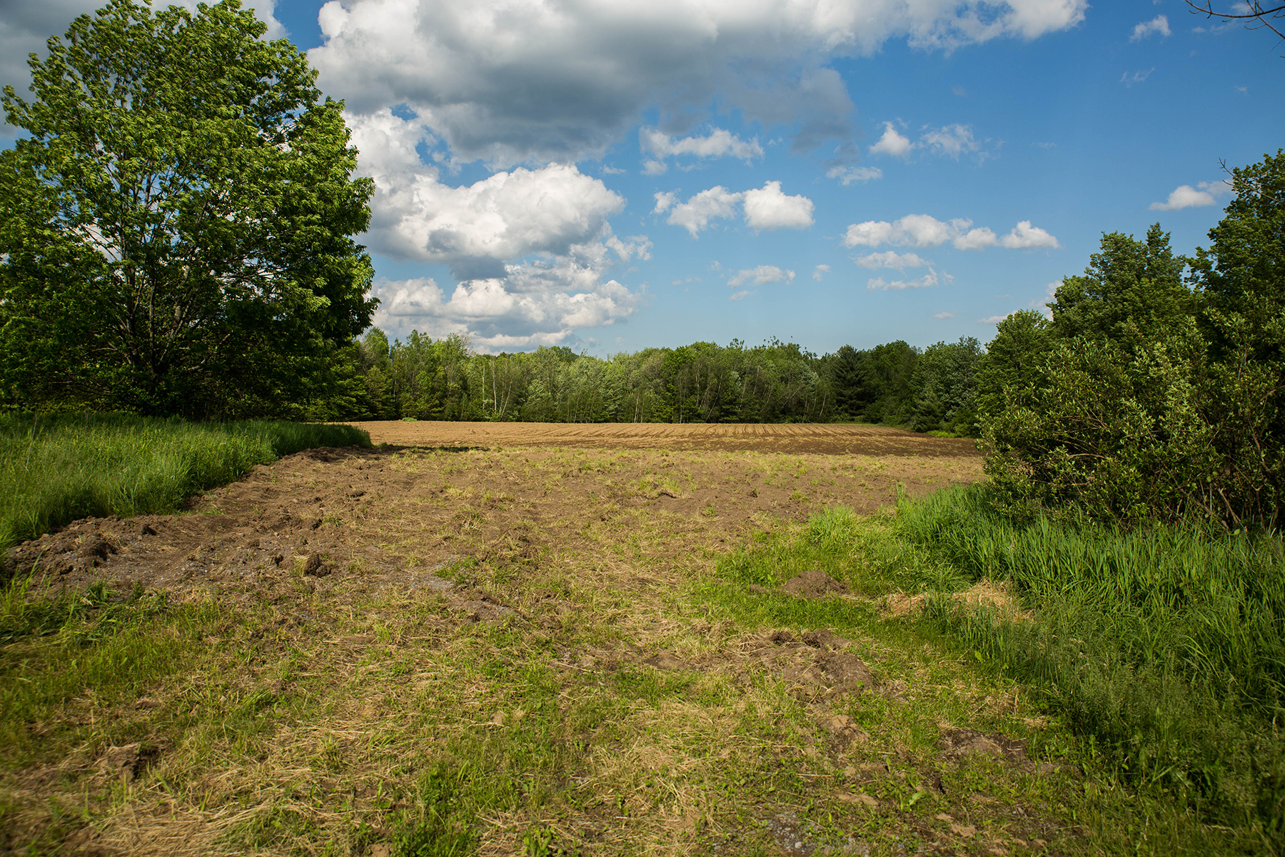 Terrain pour l Vente à Pre-Approved 10 Lot Subdivision 570 Rt 29 Milton, New York 12020 États-Unis