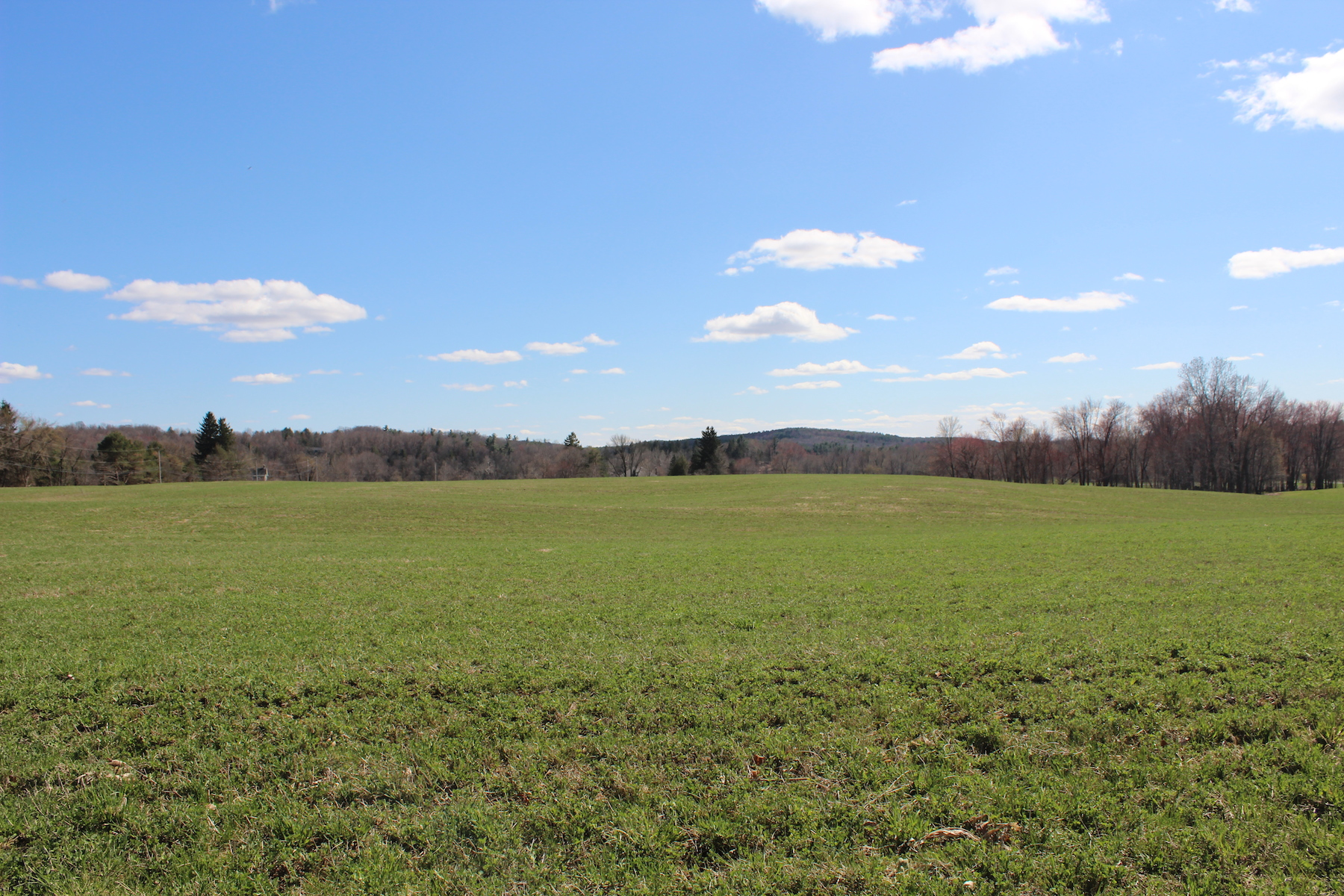 Terrain pour l Vente à 119 Acres in Kinderhook w/ Endless Possibilities 0 County Route 28a Kinderhook, New York 12184 États-Unis
