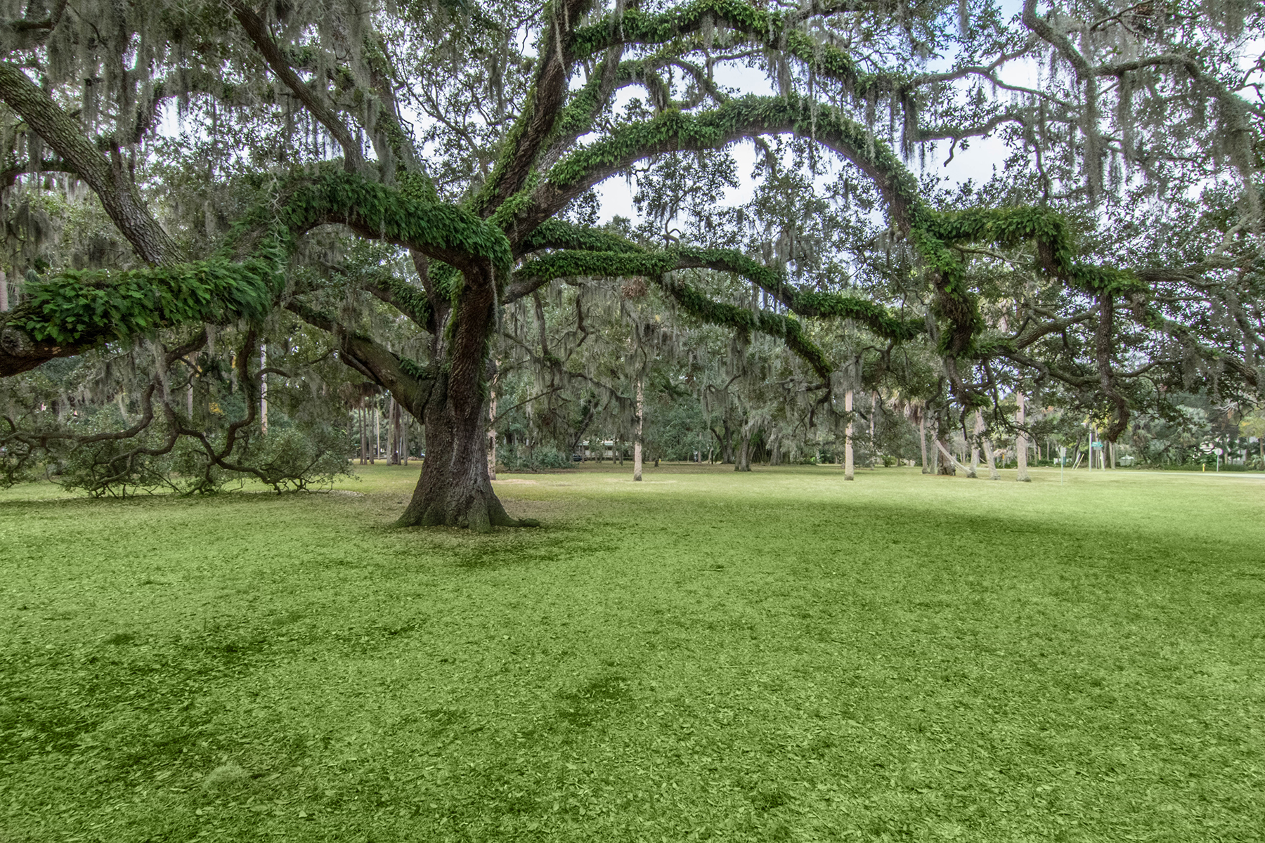 Additional photo for property listing at SOUTH TAMPA 4530 W Swann Ave,  Tampa, Florida 33609 United States