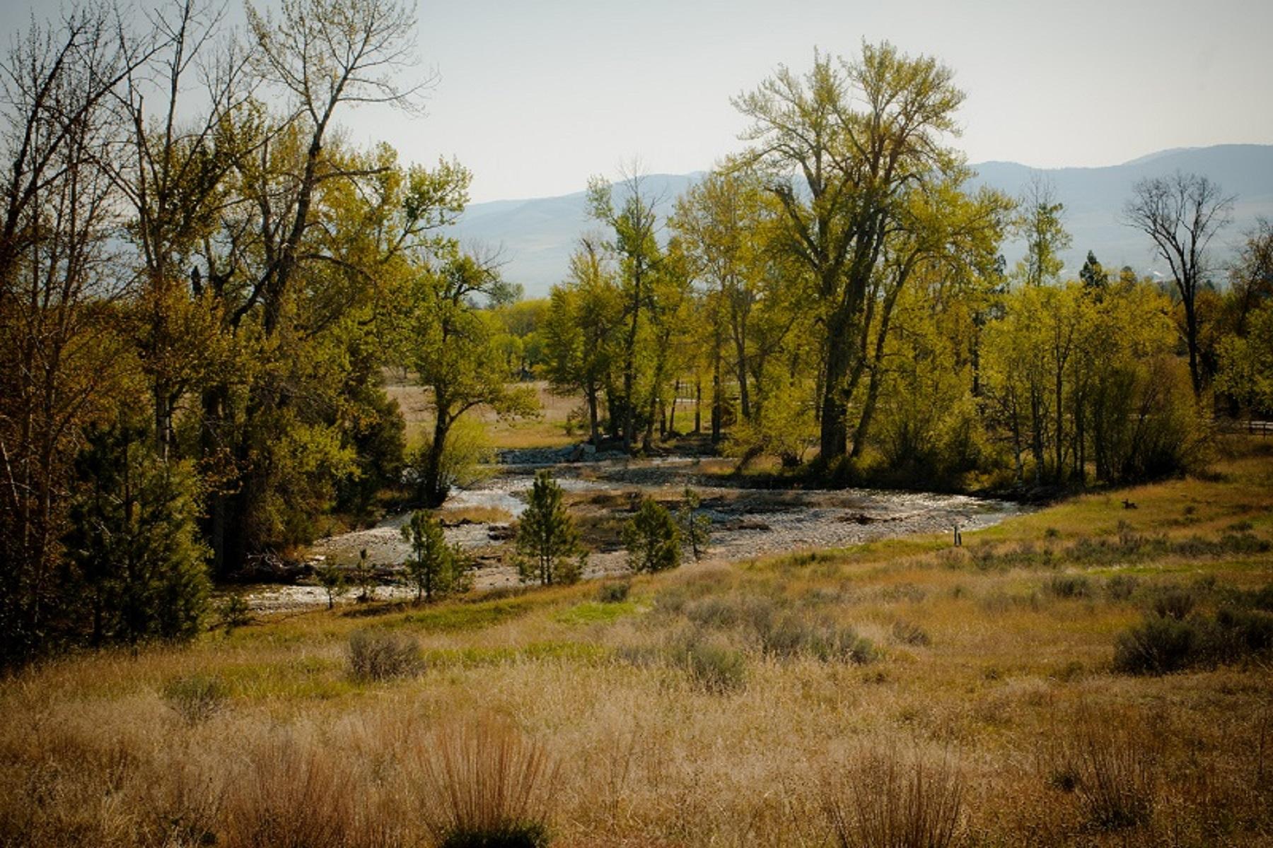 Land für Verkauf beim Lot 14 Hillside Ranch Rd Lot 14 Hillside Ranch Rd Victor, Montana, 59875 Vereinigte Staaten