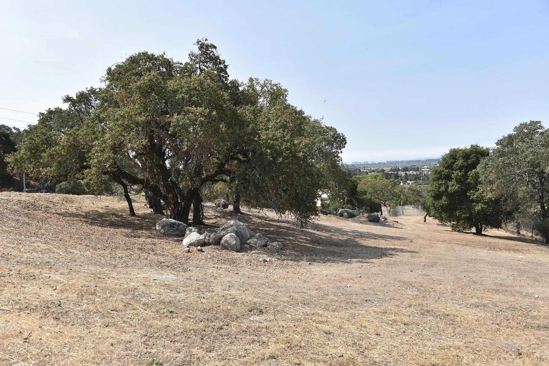 Arazi için Satış at Building Sites in a Wooded Hidden Glen Subdivision 23 Pascale Place Napa, Kaliforniya, 94558 Amerika Birleşik Devletleri