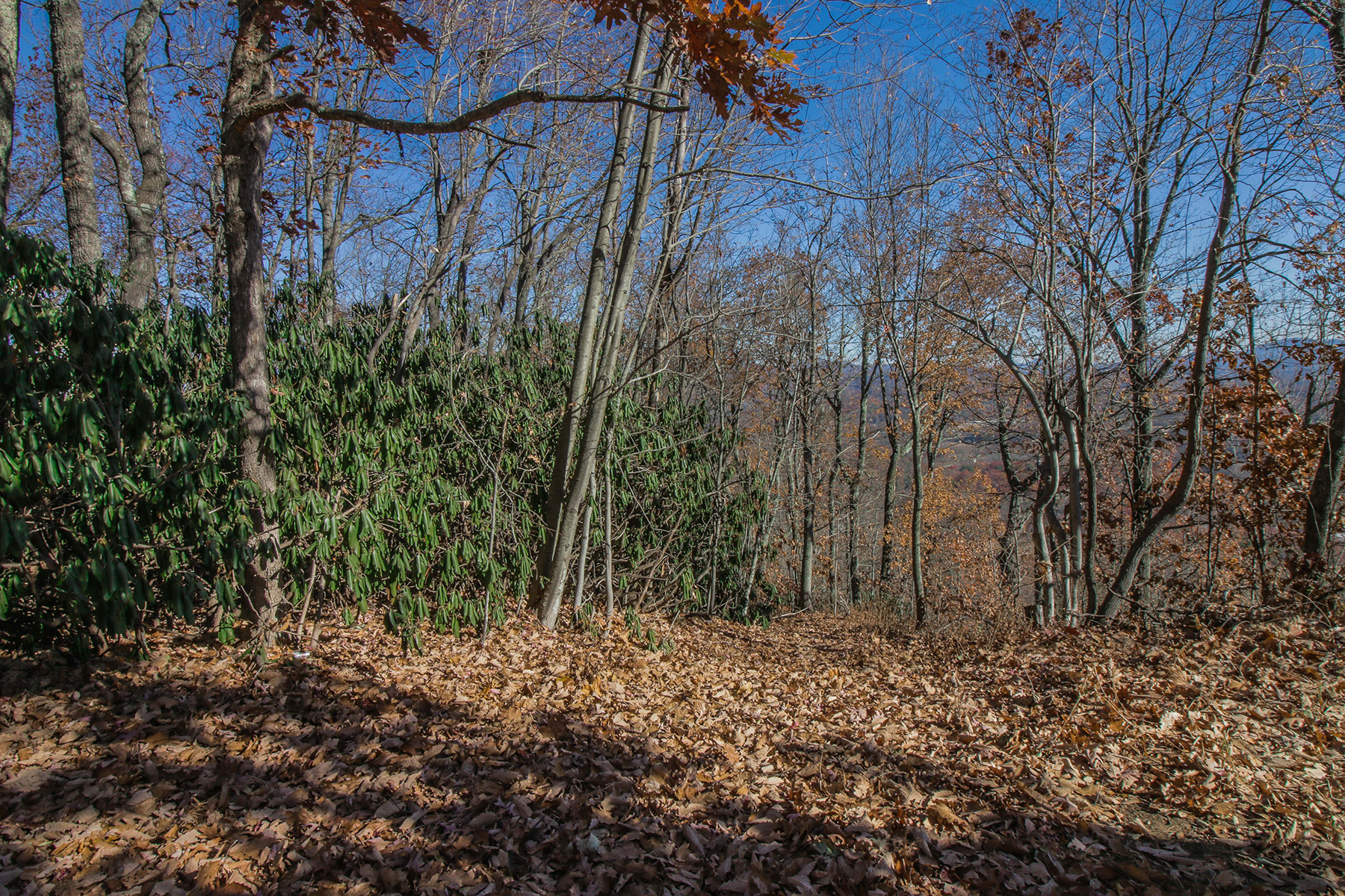 Land for Sale at HENDERSONVILLE 5 Bayless Dr 5, Hendersonville, North Carolina 28791 United States