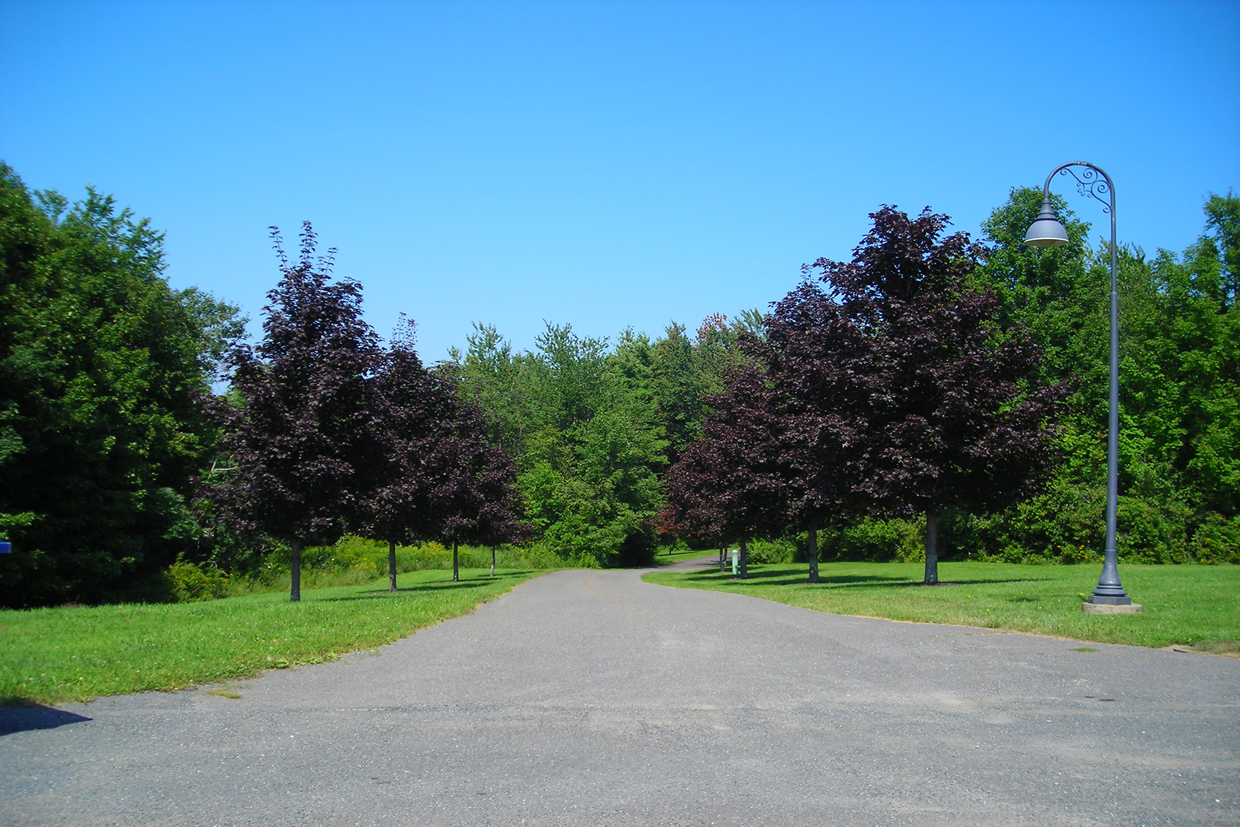 Additional photo for property listing at Mediterranean Villa 70  Coons Rd Troy, New York 12180 États-Unis