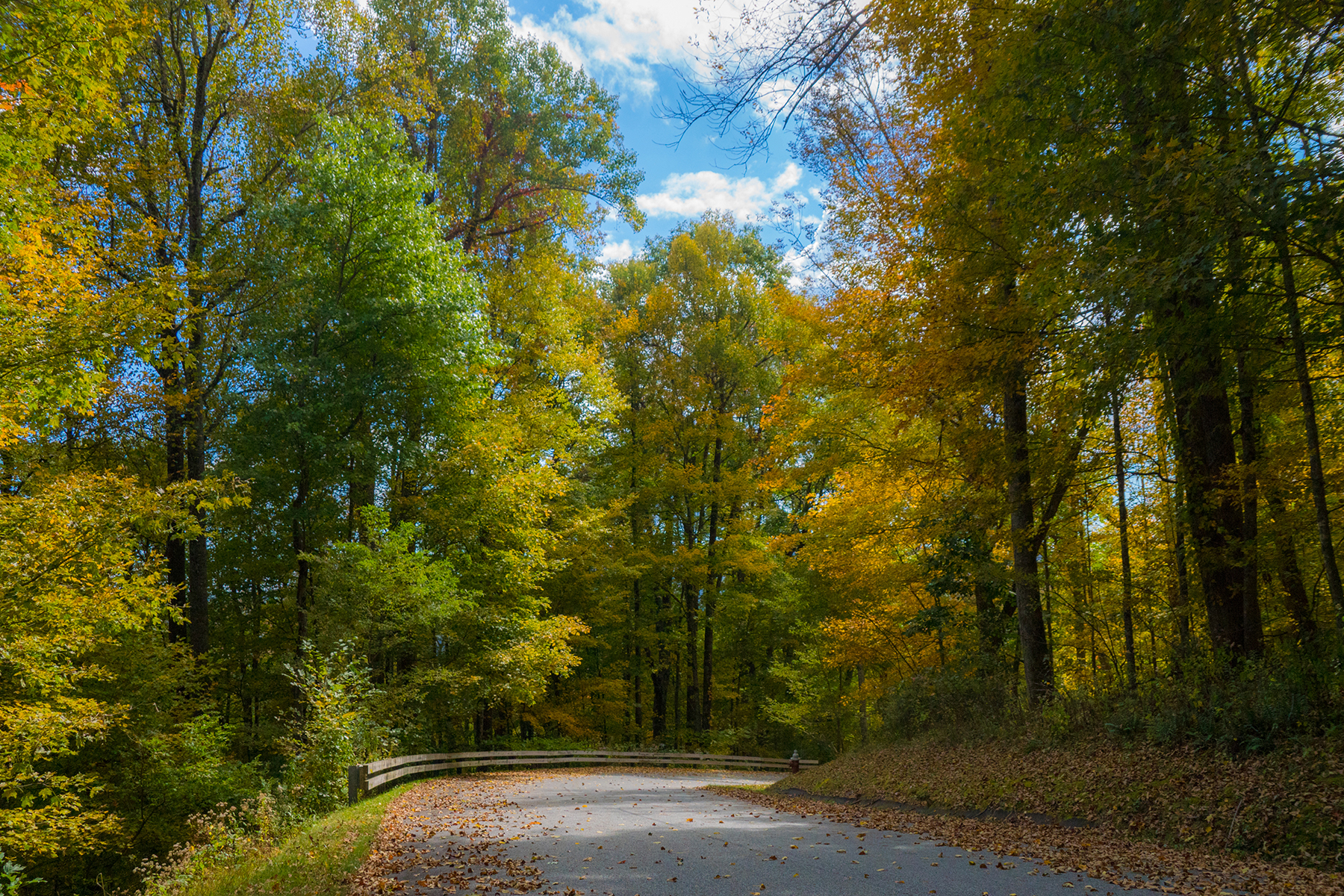 Land for Sale at BOONE - COUNCILL OAKS Lot 46 Fire Pink Rd Boone, North Carolina 28607 United States
