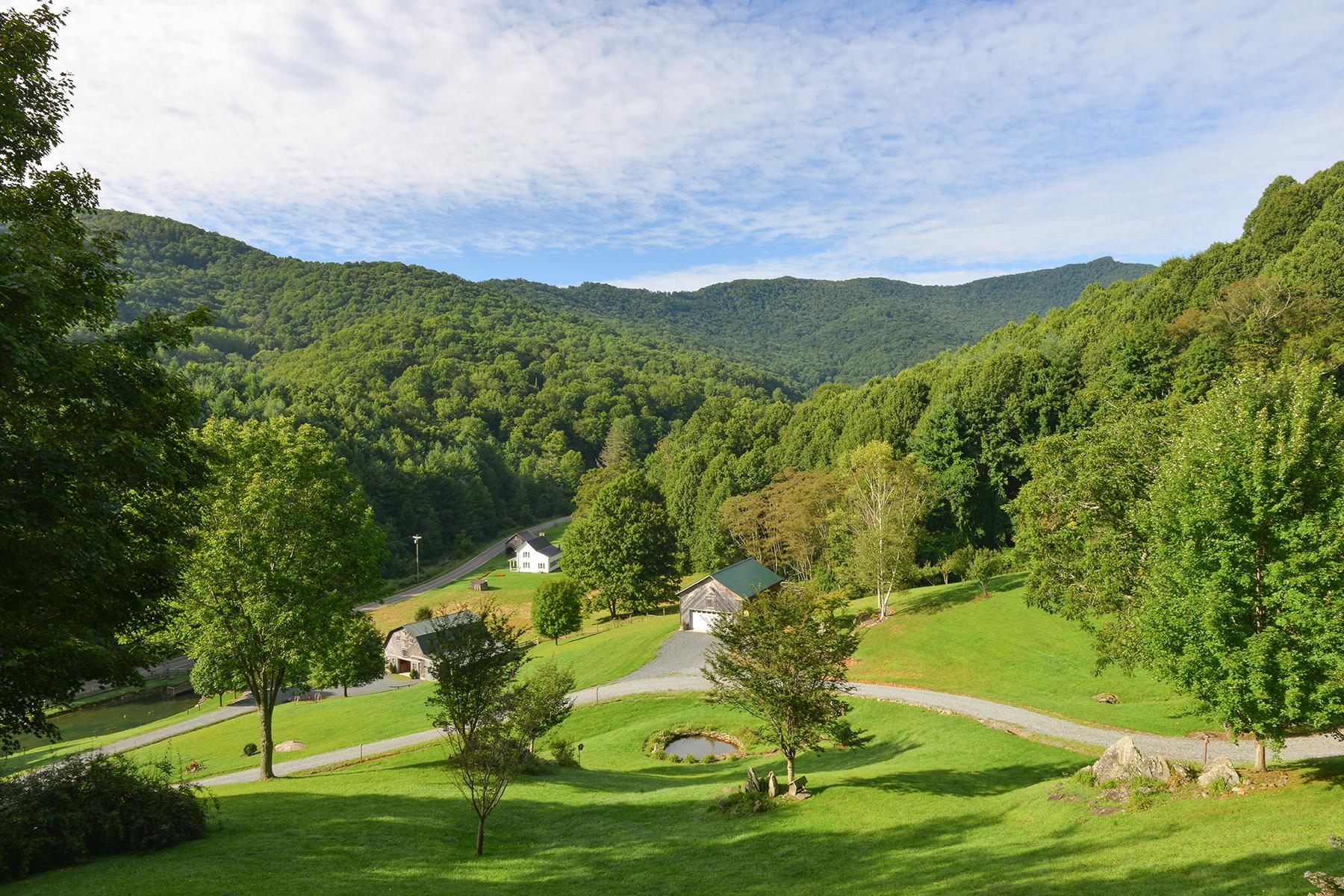 Casa para uma família para Venda às Valle Crucis 1548 Dutch Creek Road Banner Elk, Carolina Do Norte, 28604 Estados Unidos